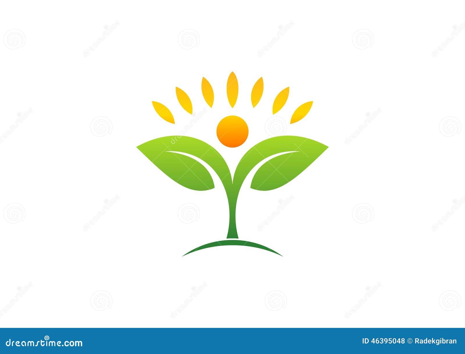 Pianta, la gente, naturale, logo, salute, sole, foglia, botanica, ecologia, simbolo ed icona