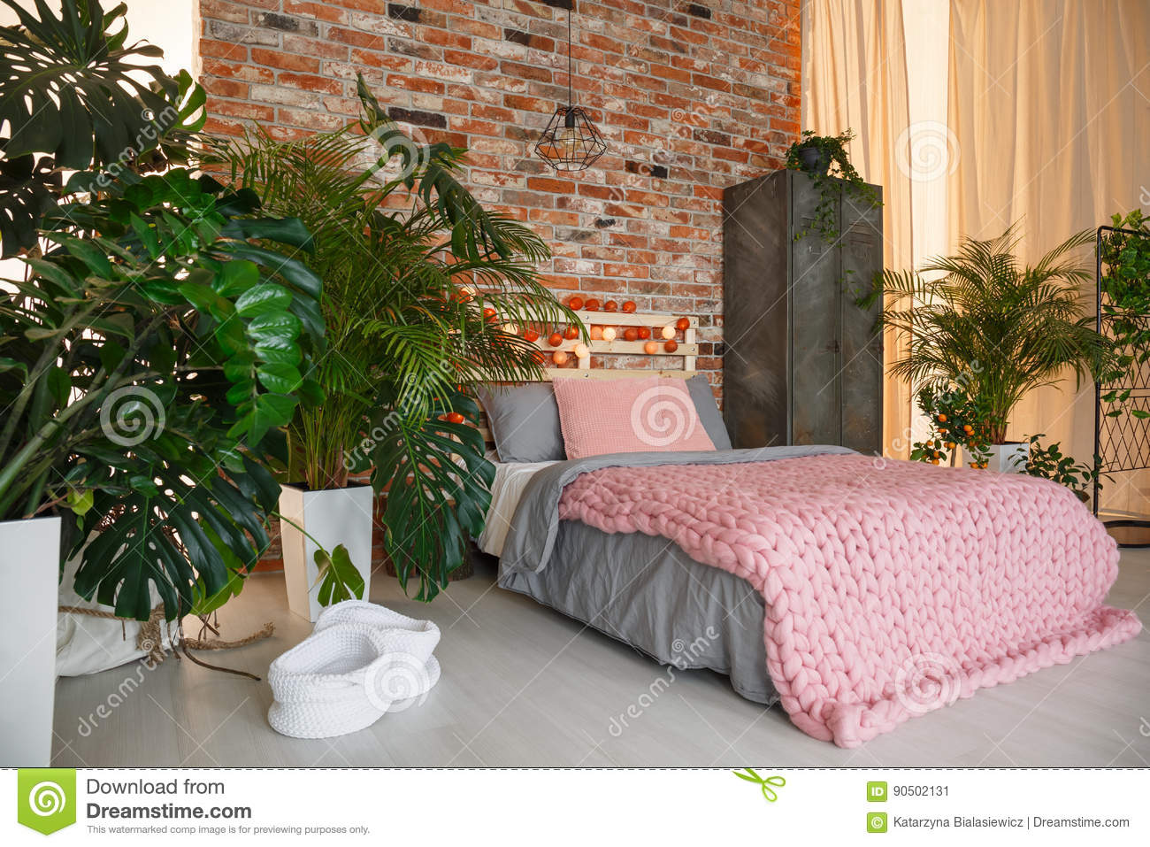 https://thumbs.dreamstime.com/z/piante-camera-da-letto-90502131.jpg