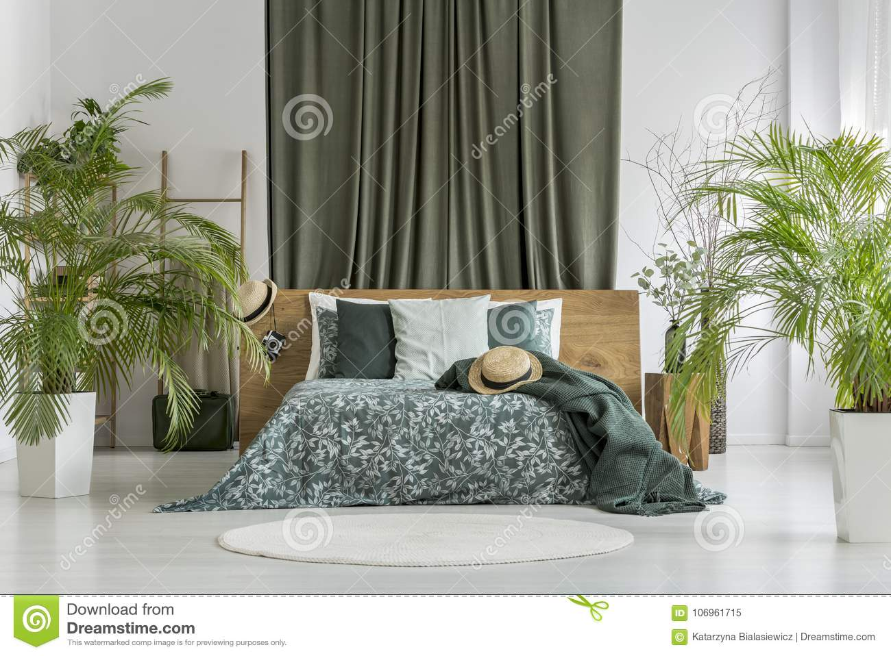 https://thumbs.dreamstime.com/z/piante-camera-da-letto-verde-oliva-106961715.jpg