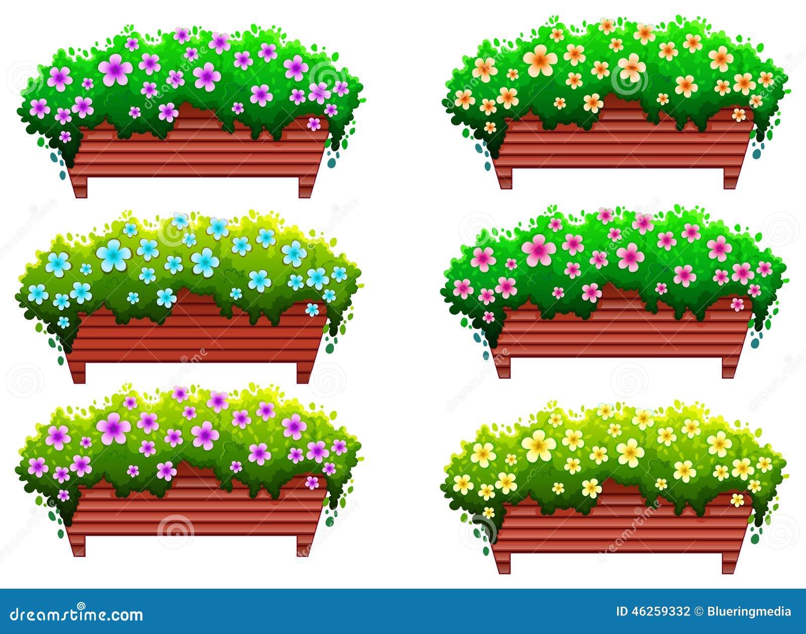 Piante da appartamento con i fiori illustrazione - Piante da interno con fiori ...