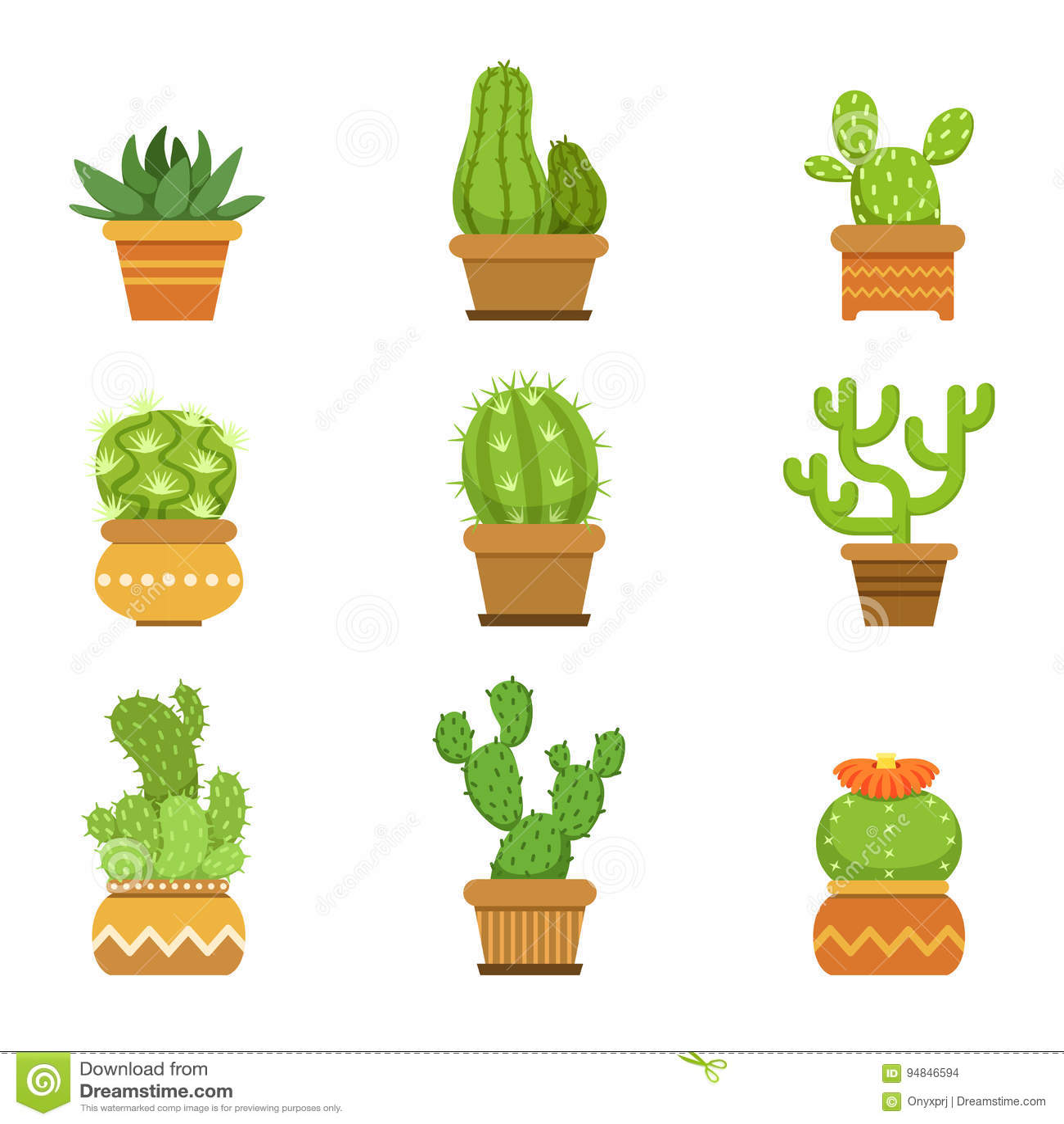 Piante decorative di botanica in vasi cactus con l 39 isolato for Piante decorative
