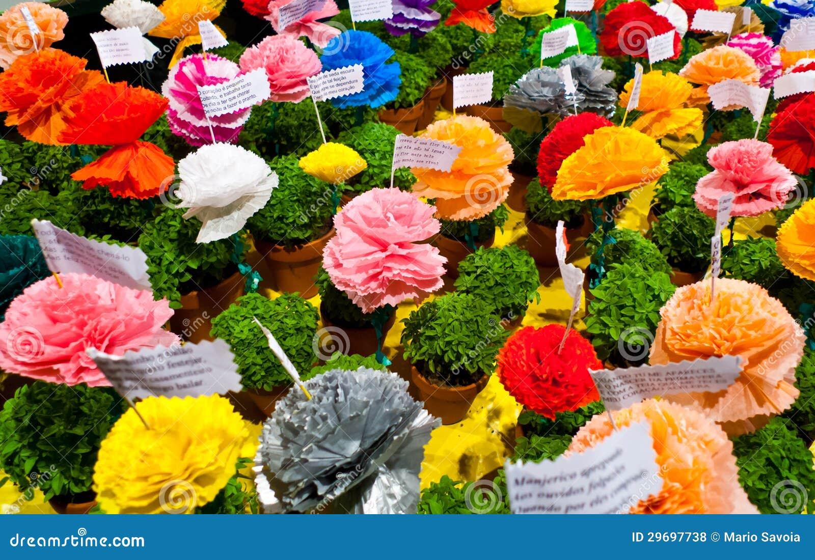 Fiori Del Mese Di Giugno piante di manjerico fotografia stock. immagine di vase