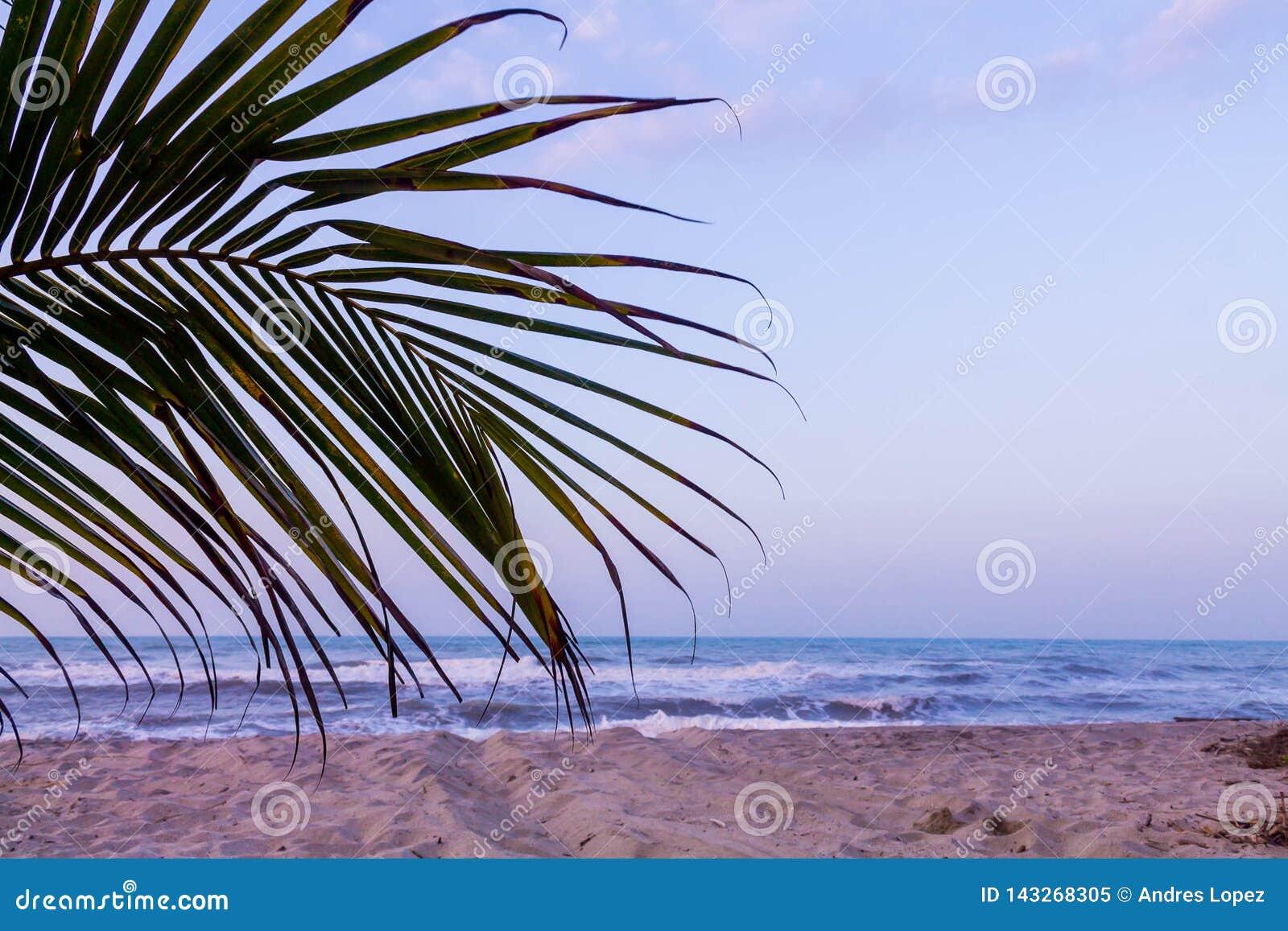 Piasek, słońce i morze w Tayrona parku,