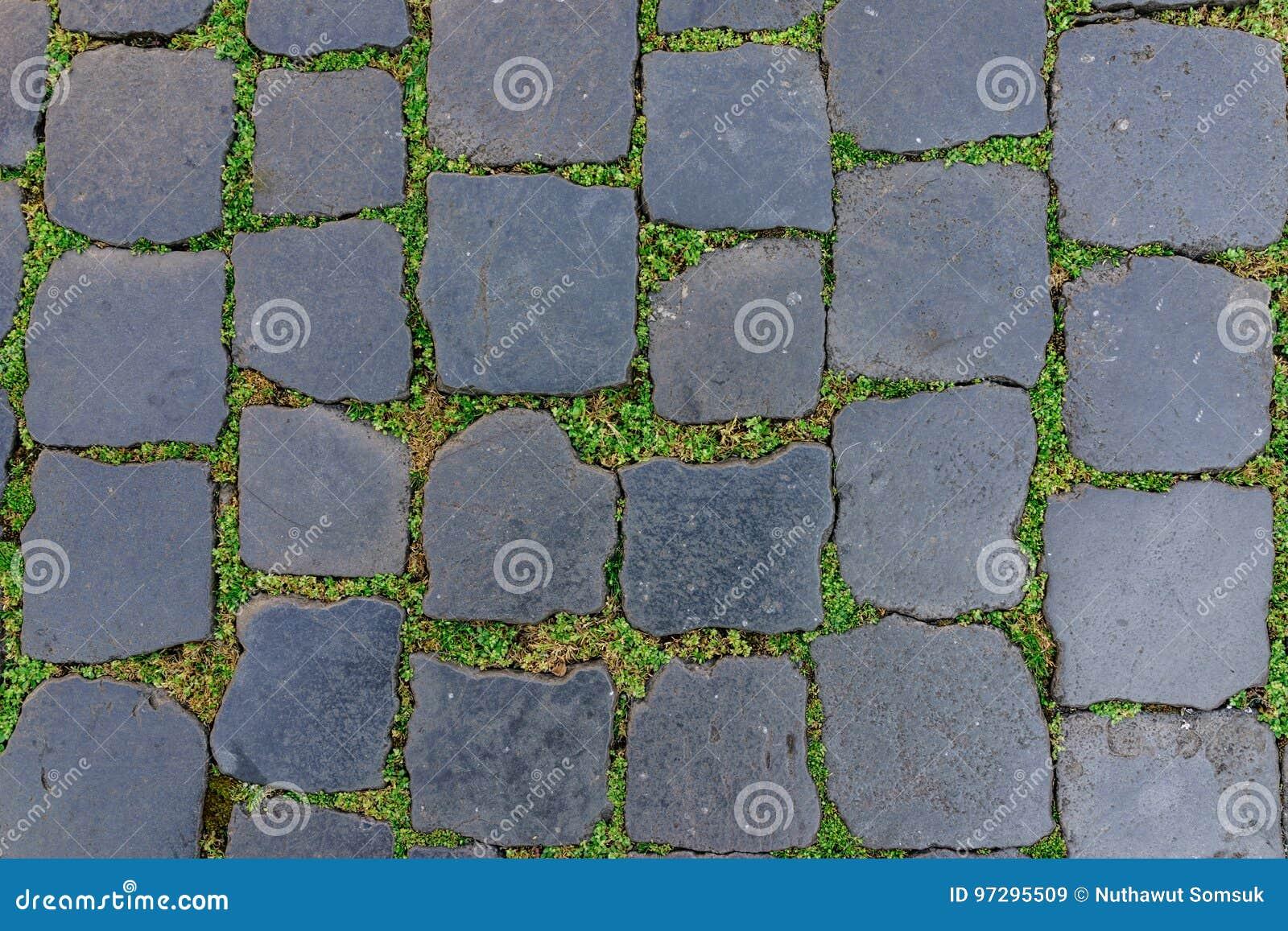 Piastrella per pavimento antica della pietra del granito con erba