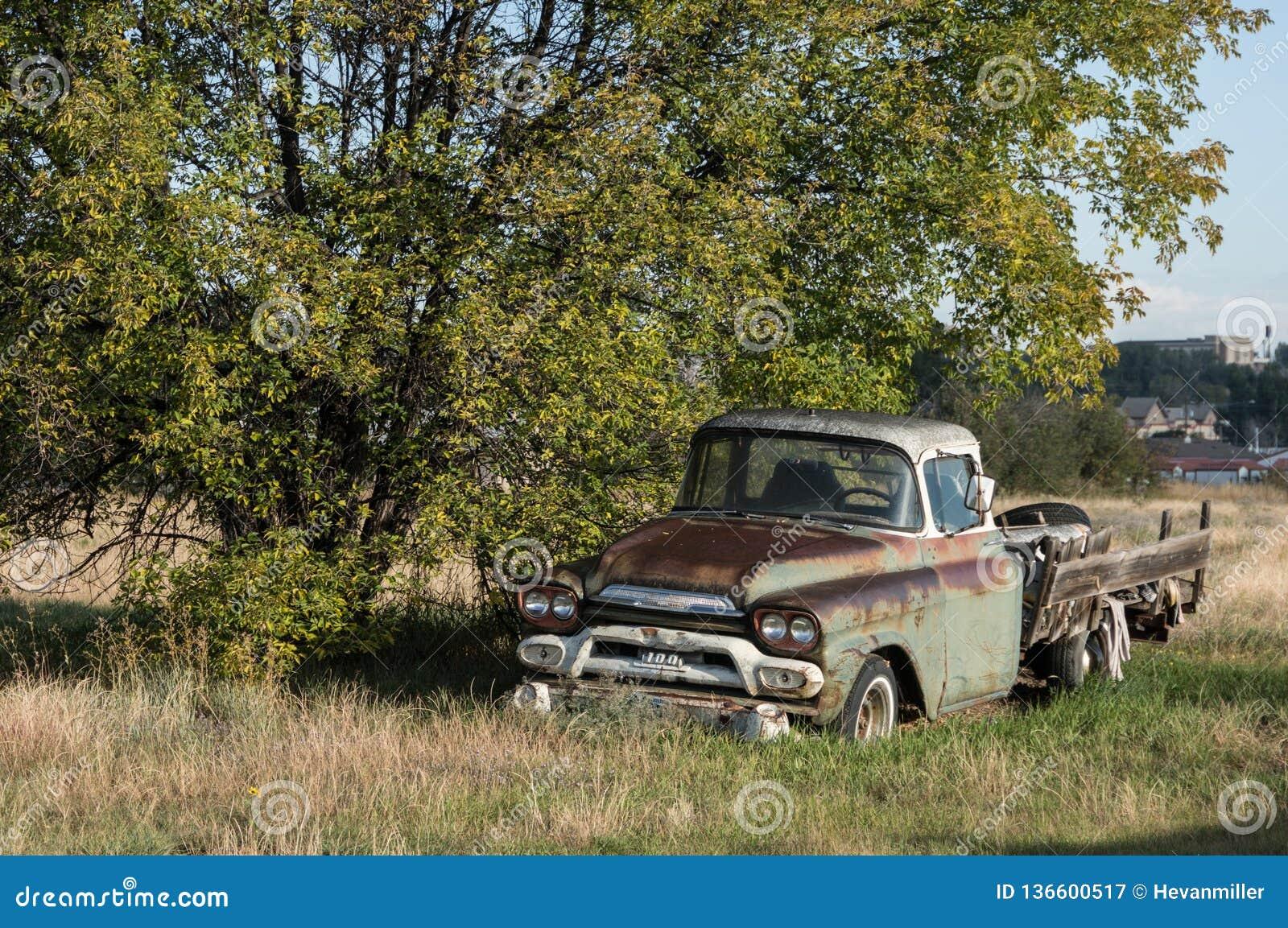 Picchii selvaggiamente Rusty Pick Up Truck Parked anziano sotto un albero