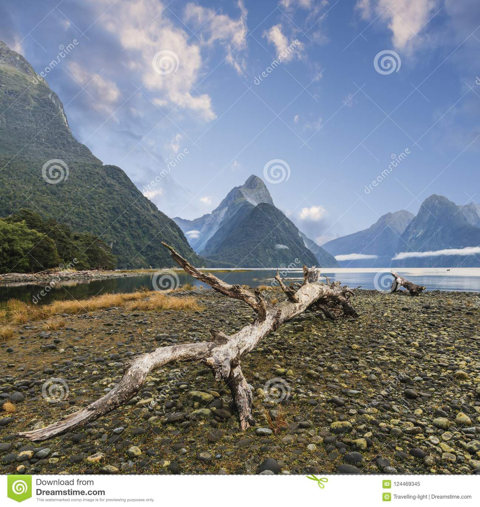 Picco del mitra e Milford Sound Nuova Zelanda