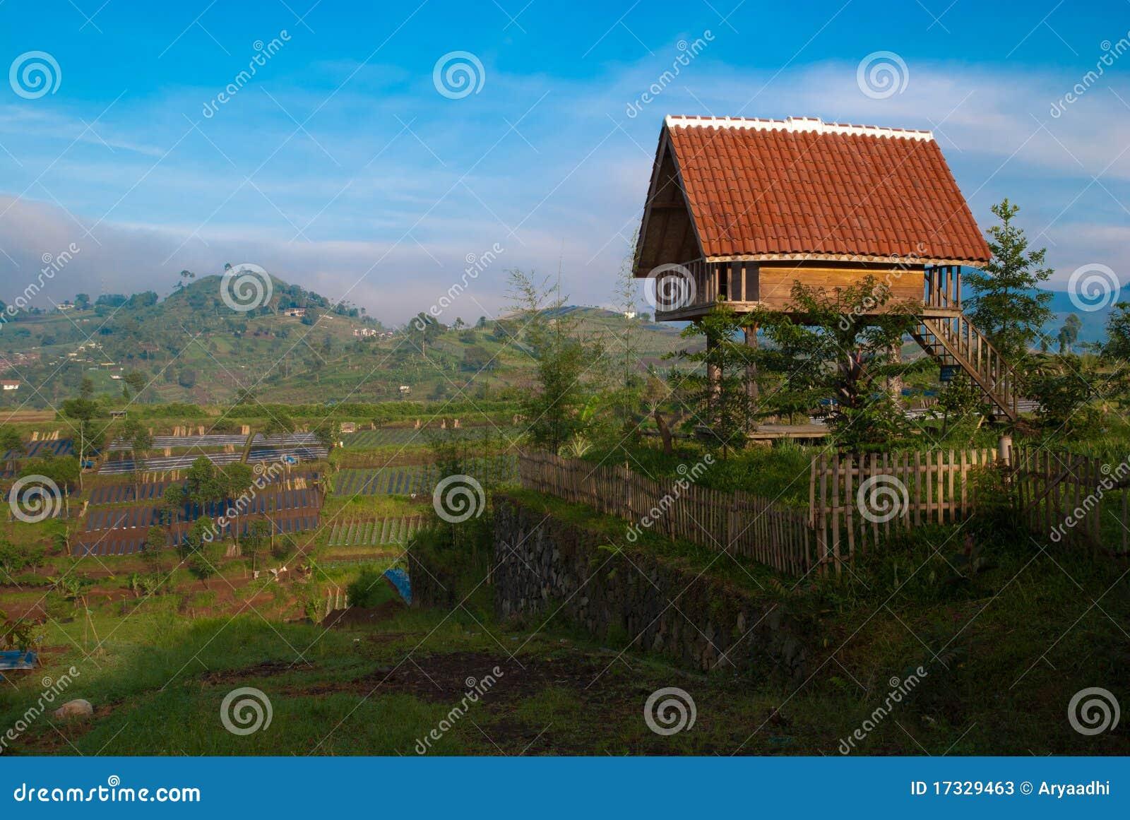 Piccola casa immagine stock immagine di foresta giardino for Schizzo di piccola casa