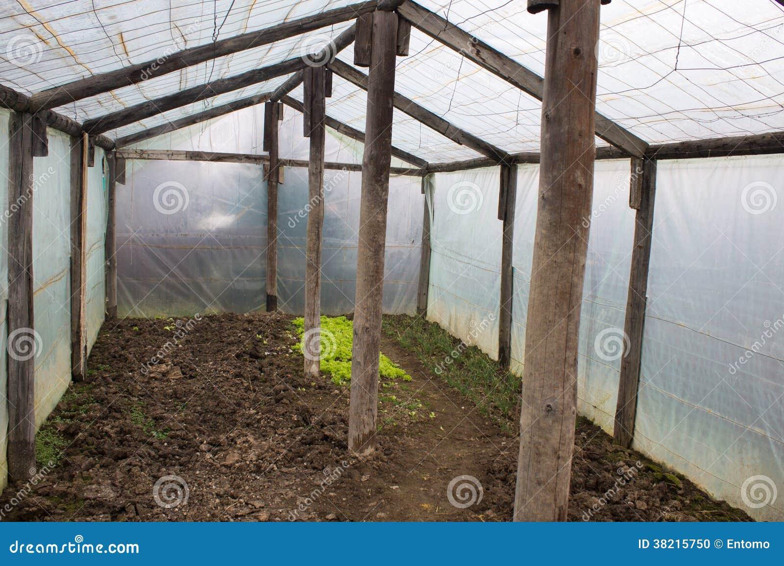 Piccola serra fotografia stock immagine di interno vuoto for Serra agricola usata