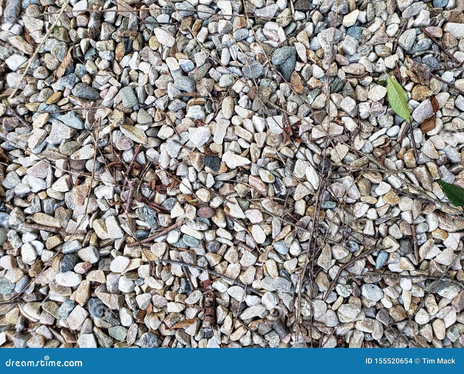 Piccola struttura della roccia e della ghiaia con la foglia