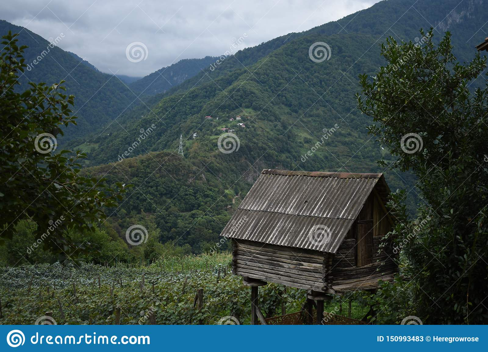 Piccola vecchia casa sulla collina