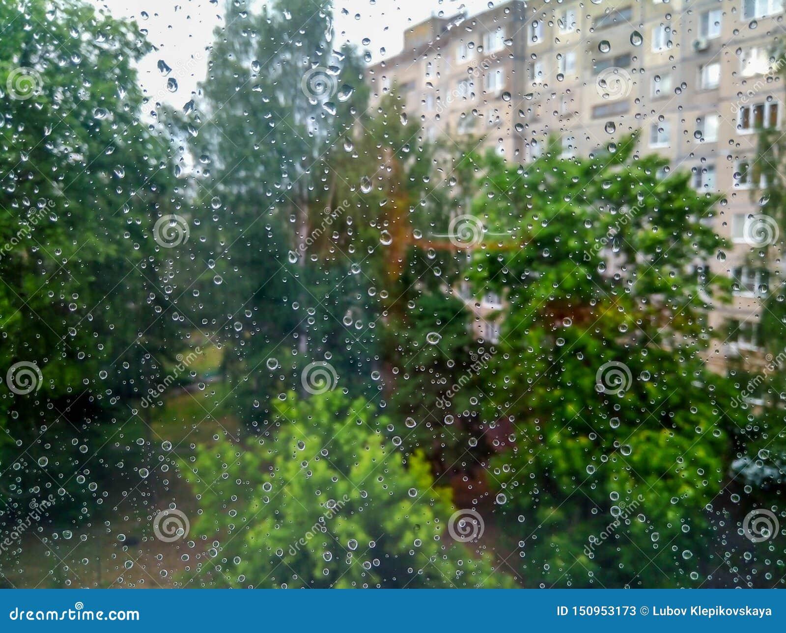 Piccole gocce di pioggia sulla finestra