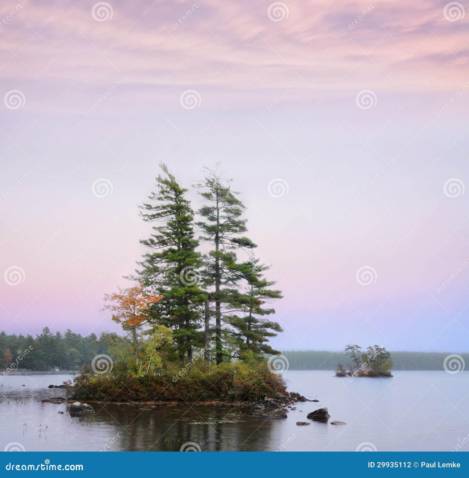 Isole nello stagno delle alci