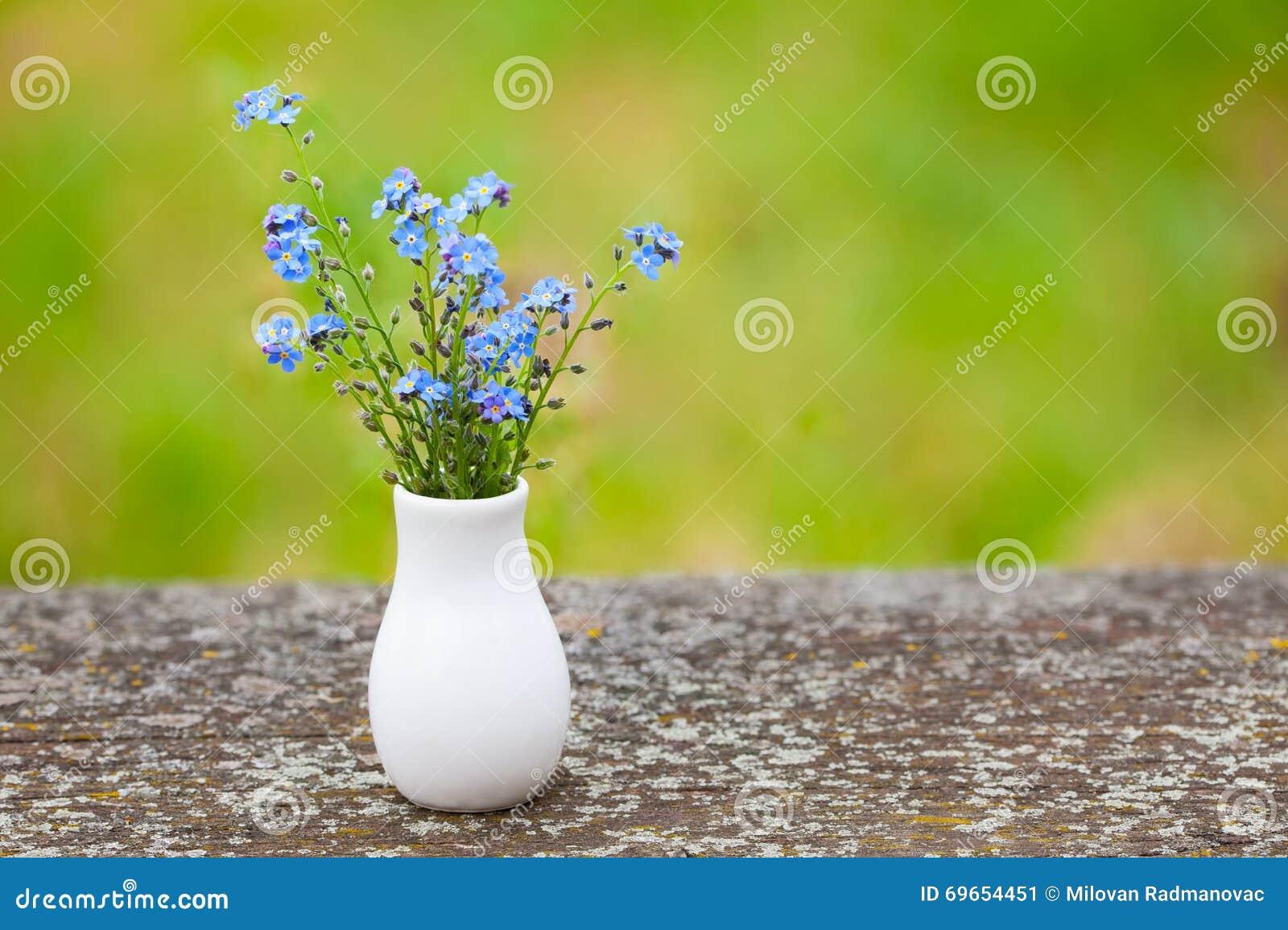 Piccoli fiori blu