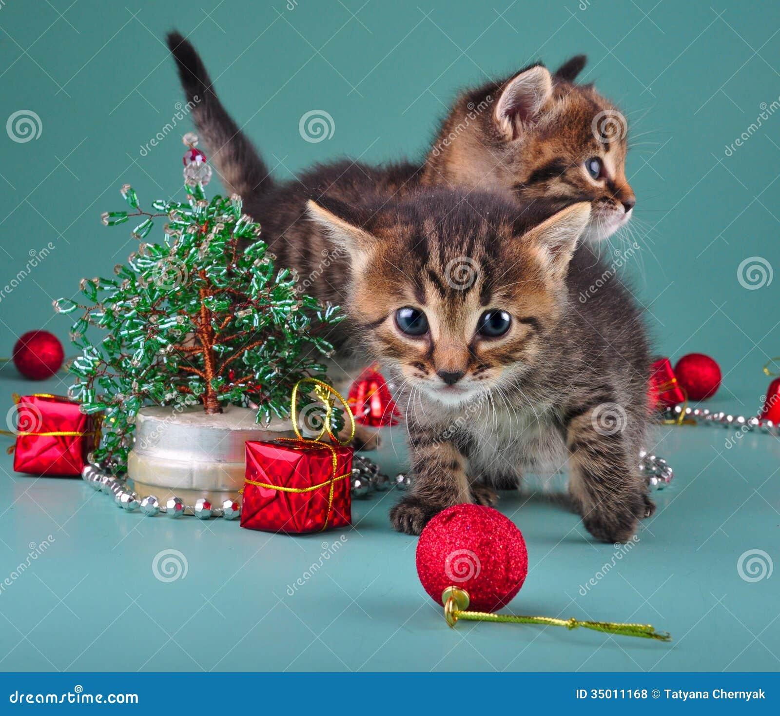 Immagini Di Natale Da Scaricare Gratis Ob04 Regardsdefemmes