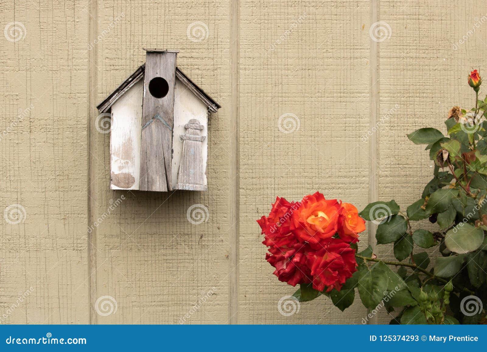 Piccolo aviario fatto a mano rustico decorato con un faro di legno che appende accanto a bello arancio, giallo, cespuglio di rosa