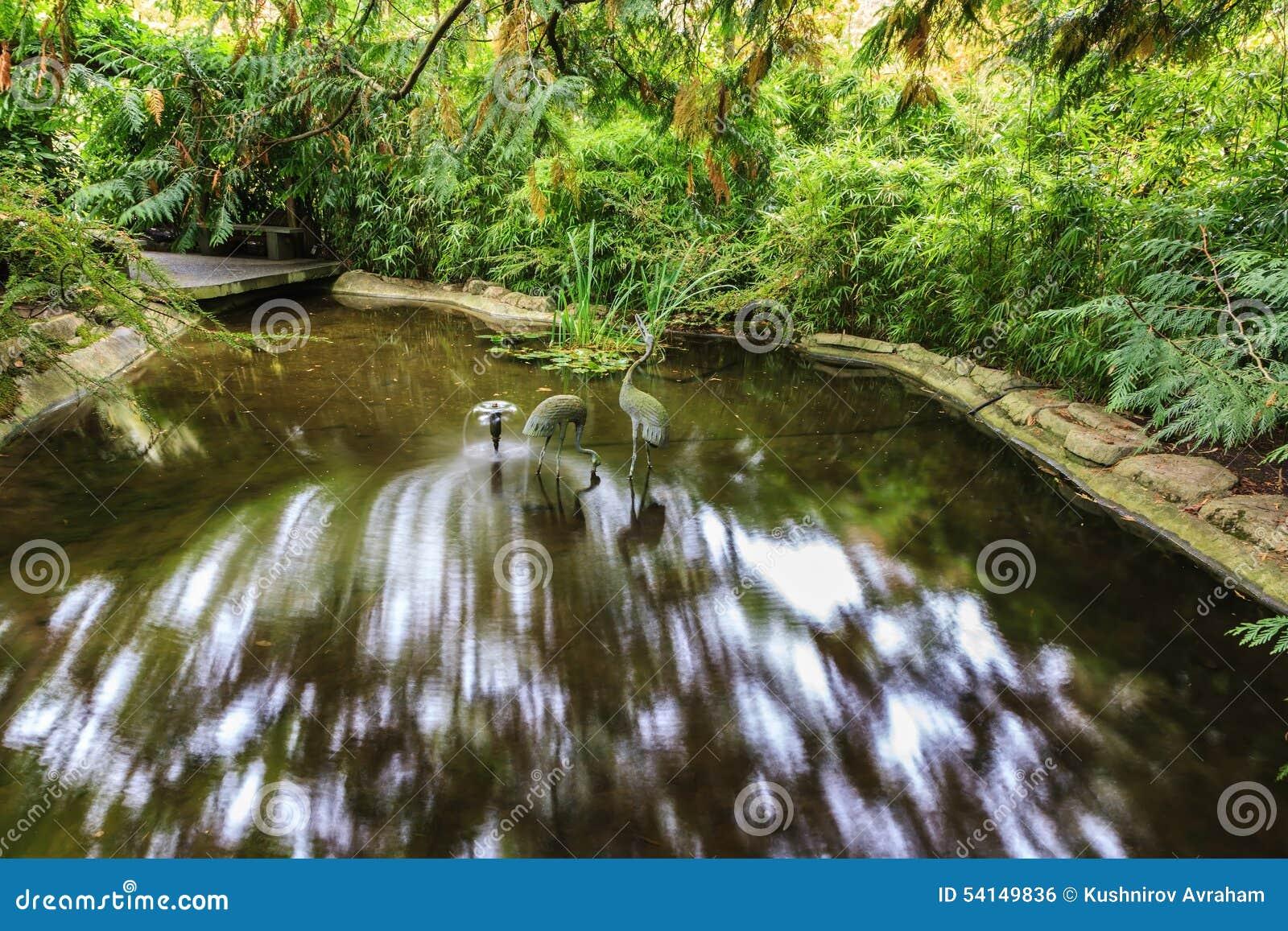 Piccolo corso d 39 acqua in giardino giapponese fotografia - Piccolo giardino giapponese ...