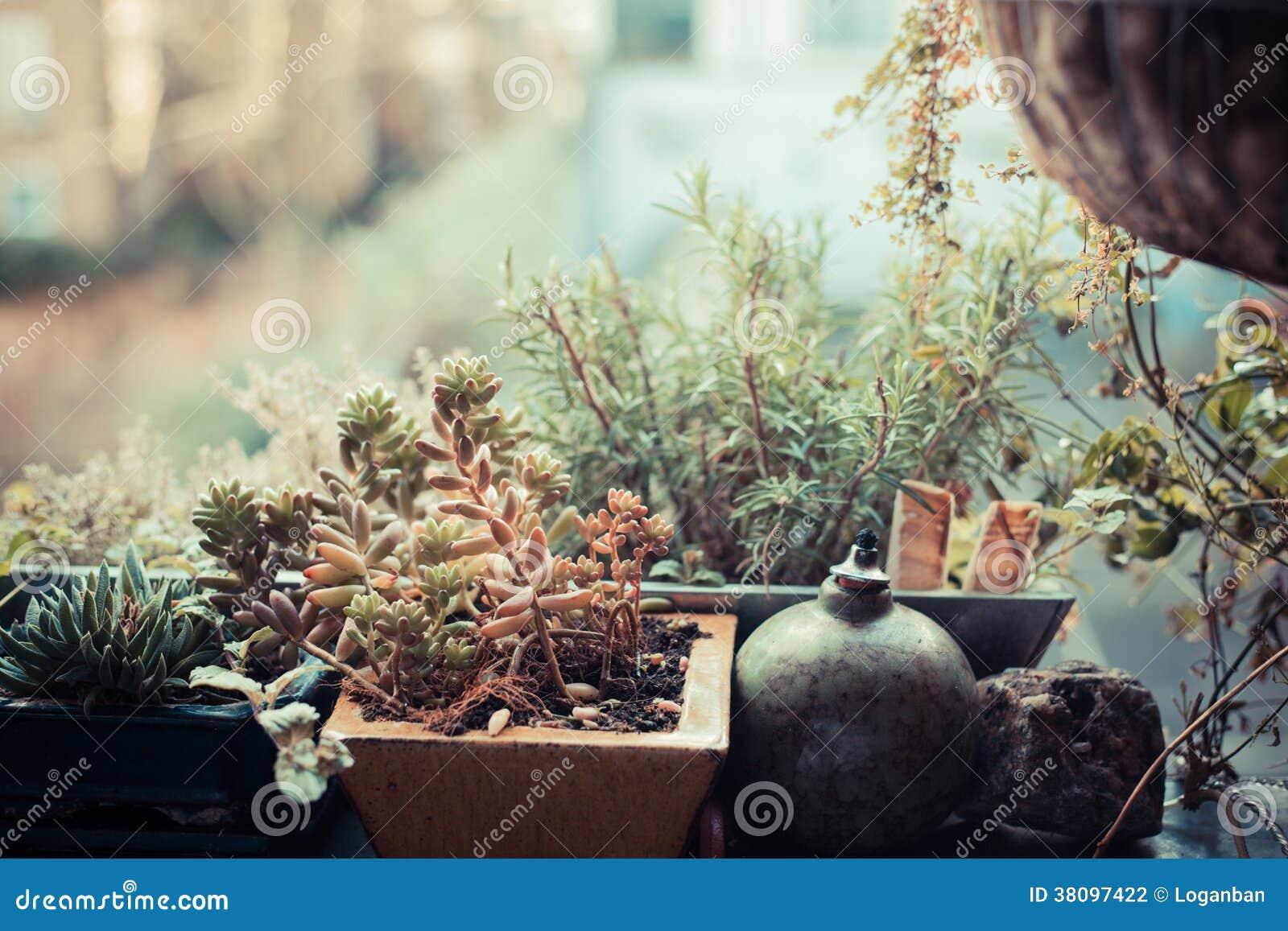 Piccolo Giardino Sul Balcone : Piccolo giardino sul balcone fotografia stock immagine di