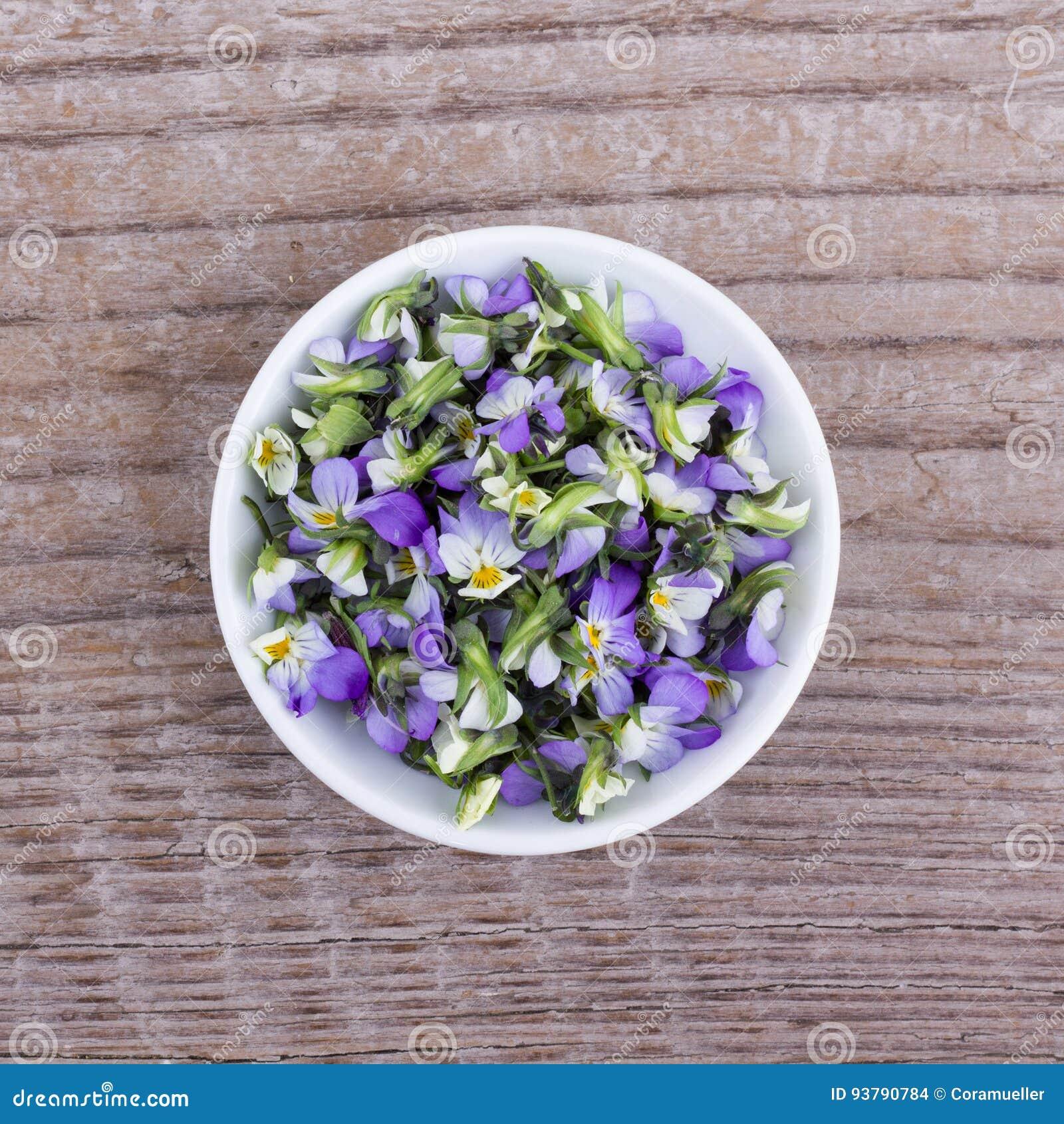 Piccolo, heartsease viola