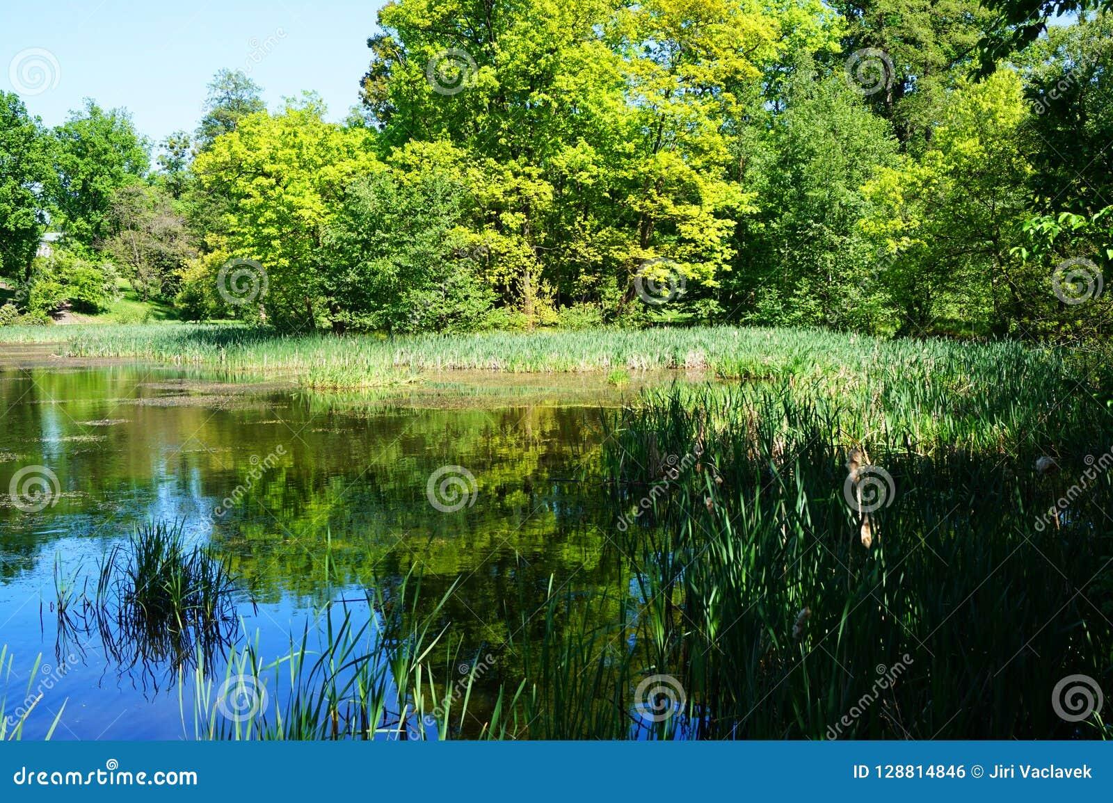 il gancio fino lago piacevole
