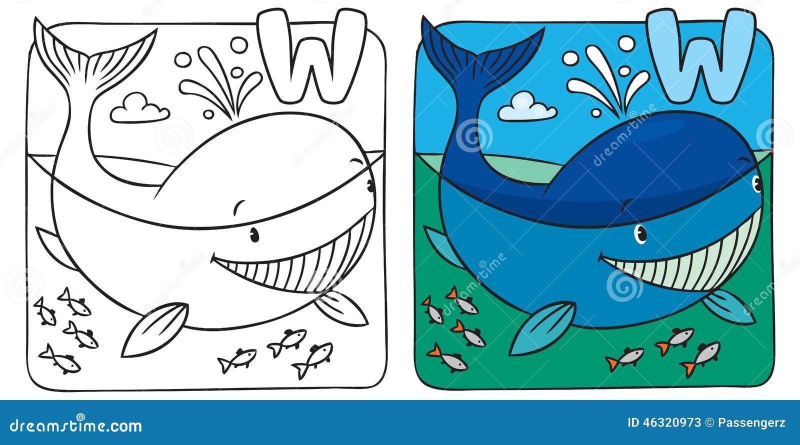 Piccolo Libro Da Colorare Della Balena Alfabeto W Illustrazione