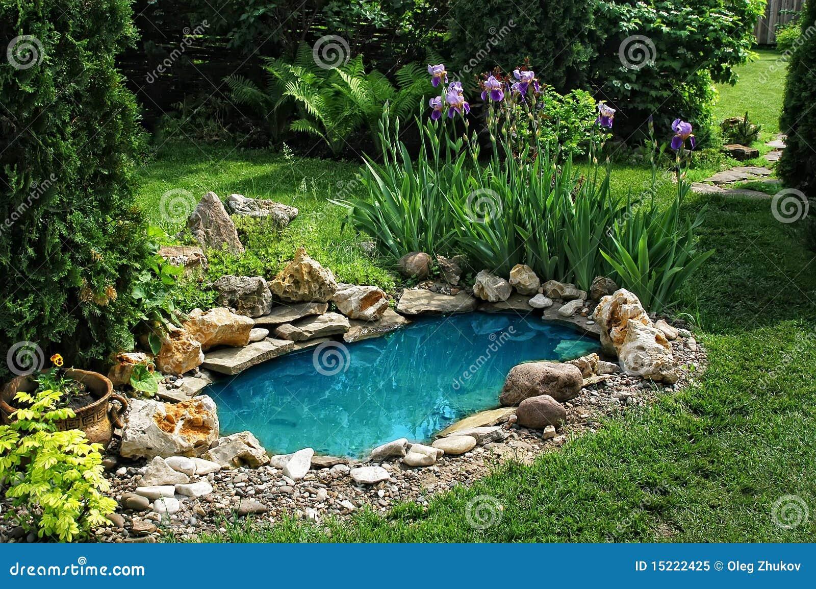 piccolo stagno nel giardino immagine stock immagine di