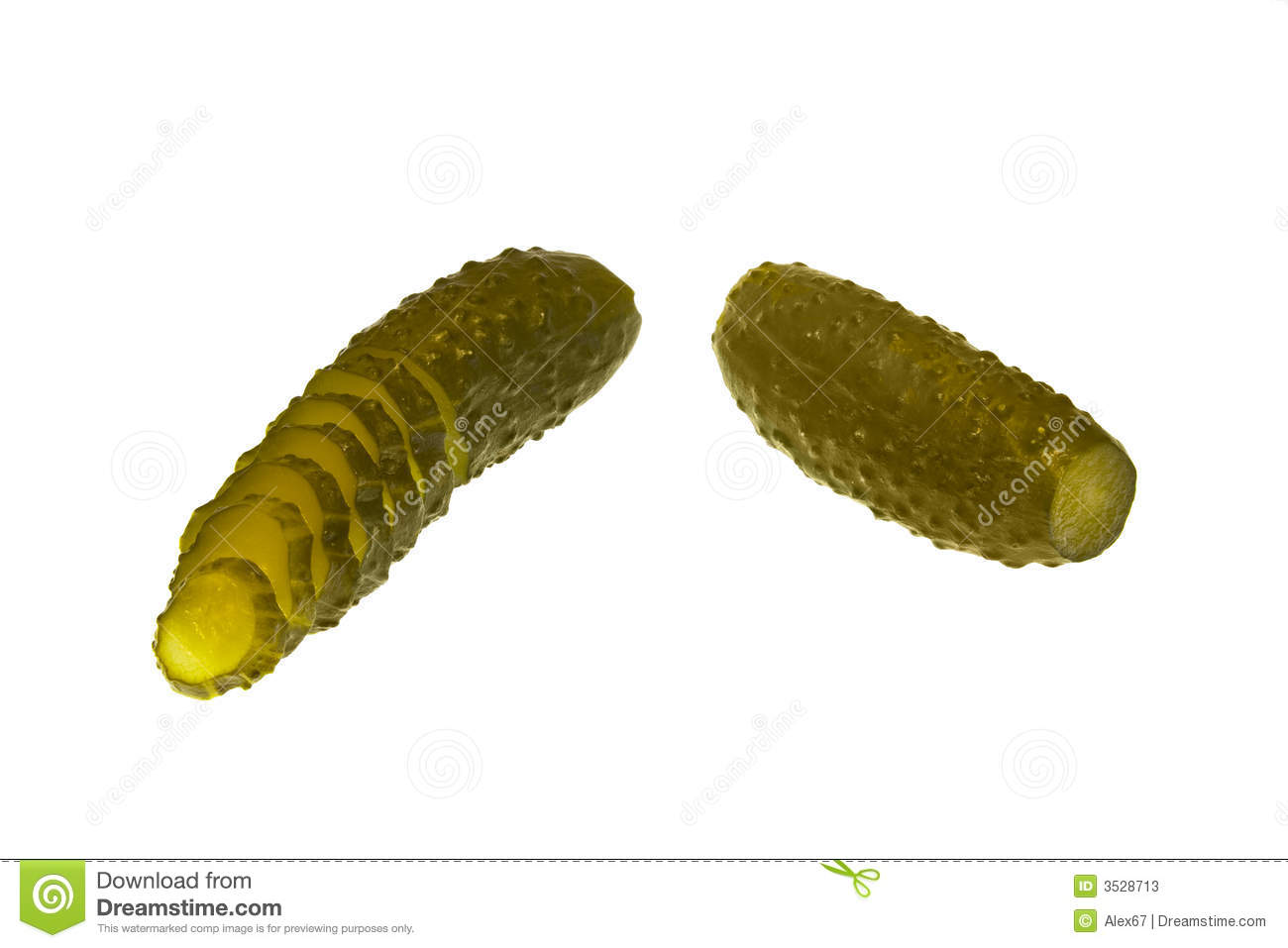 Pickle manufacturing business plan