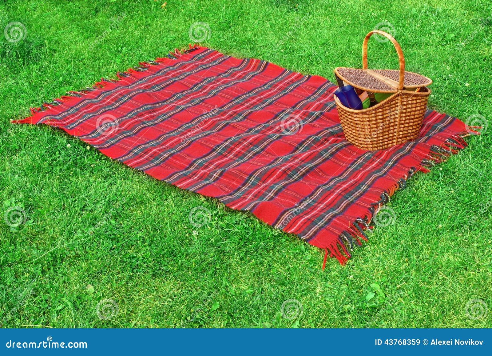 Picknickdeken En Mand Op Het Gazon Stock Foto Afbeelding