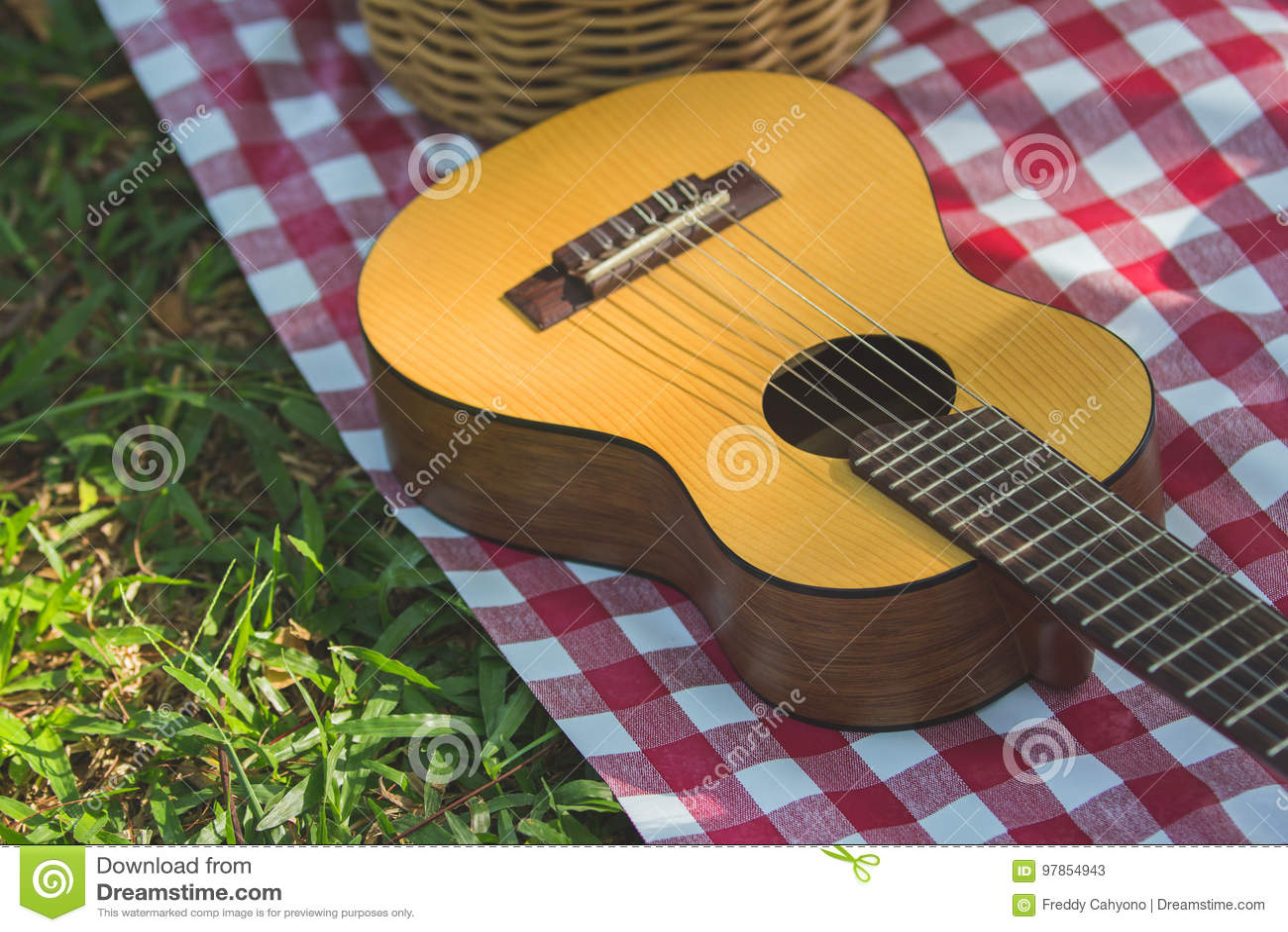 Picknickgitarre im Freien