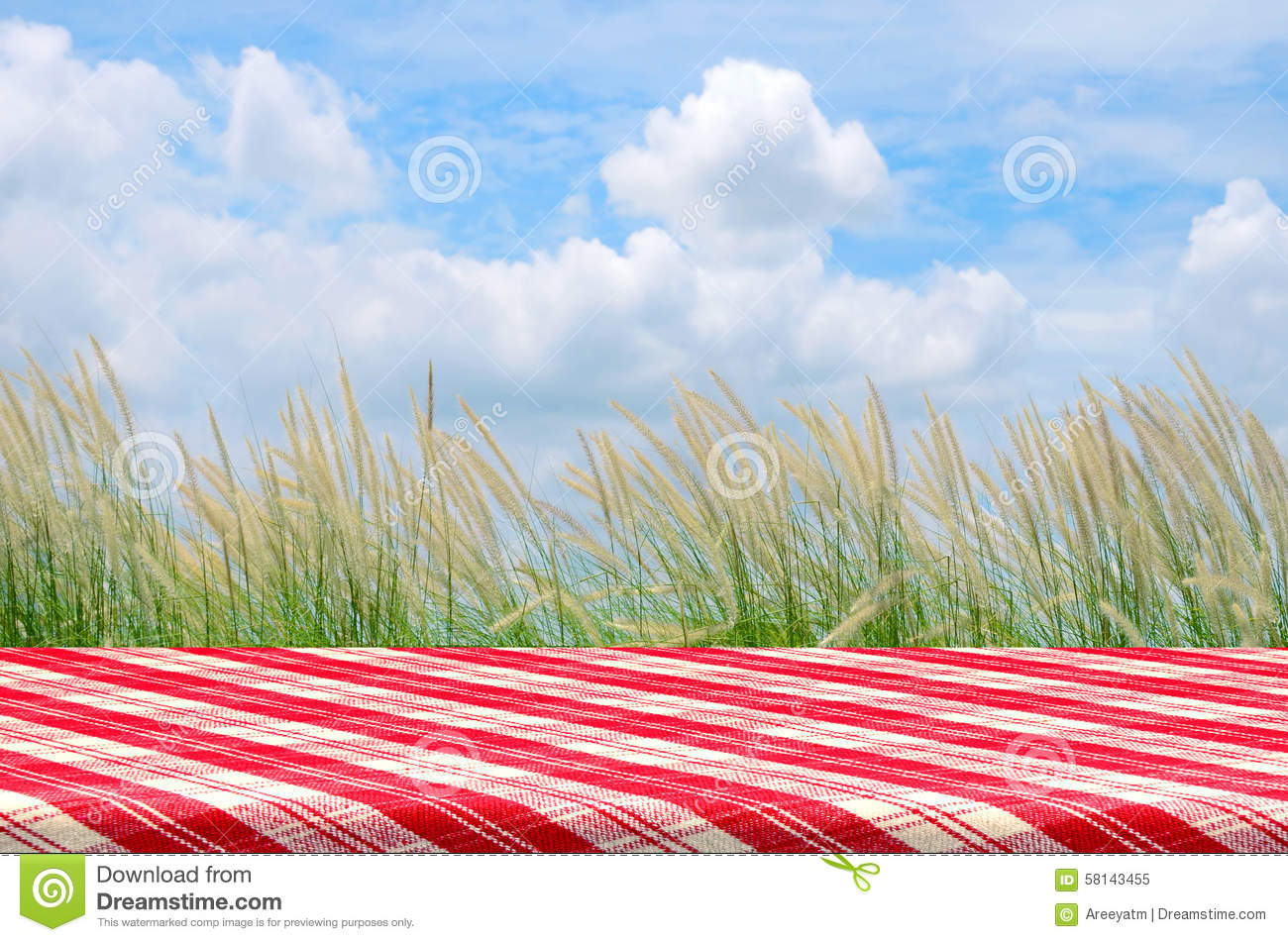 with picnic table outdoor picnic background with picnic table ...