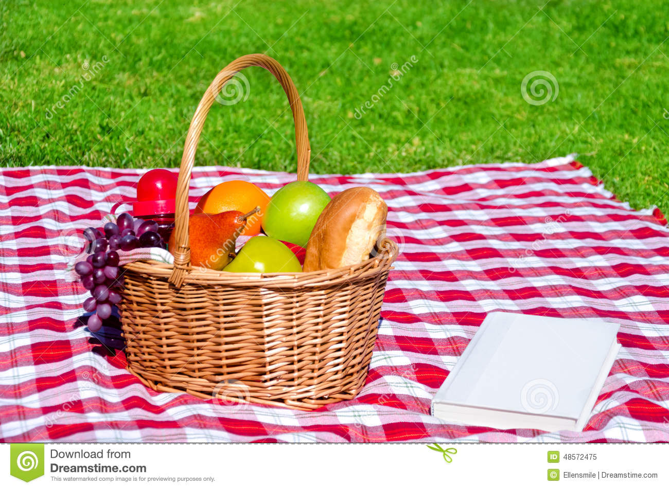 Picnic Basket With Fruits And Book Stock Photo Image