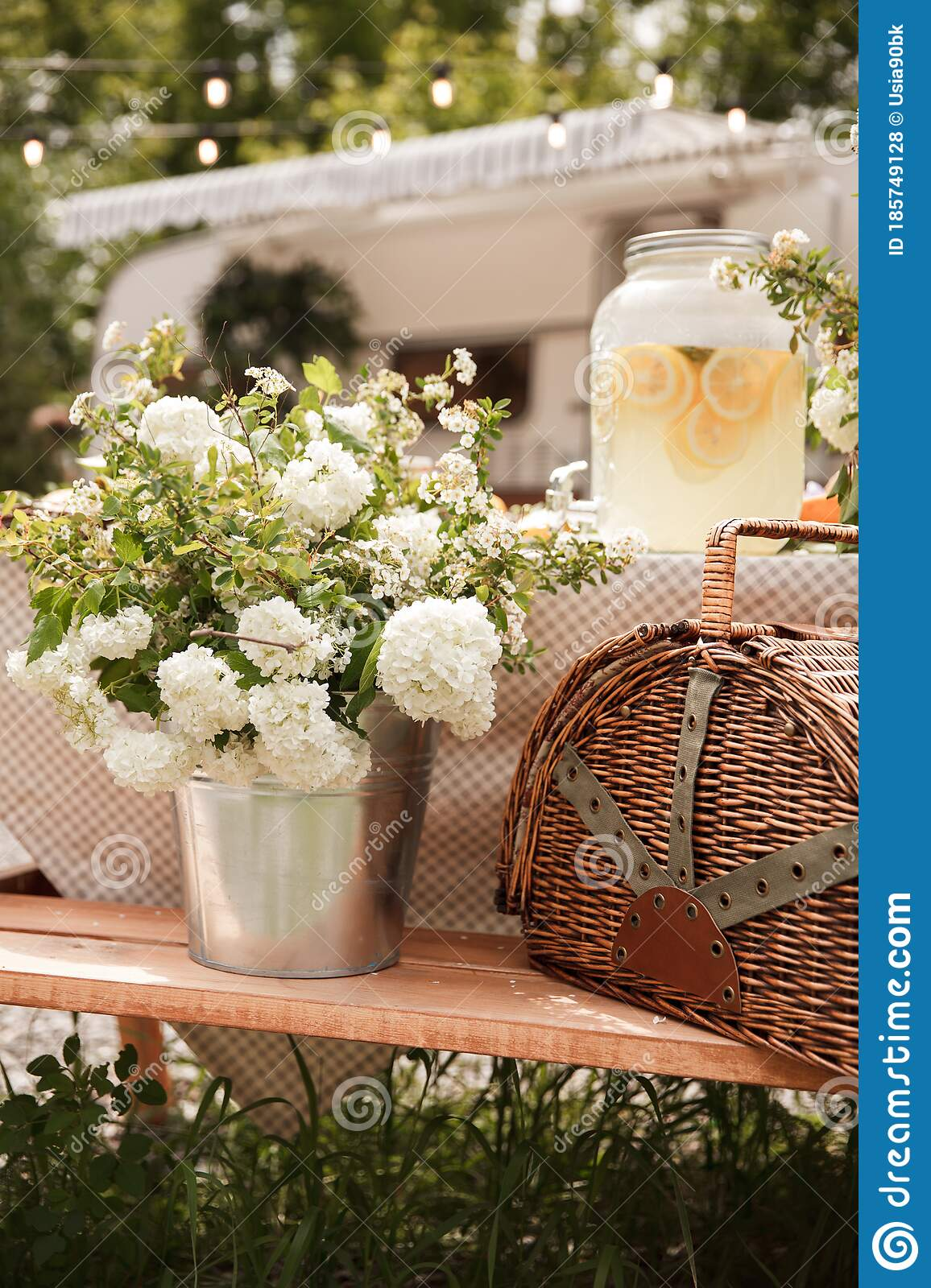 Picnic Basket With Fruits Picnic In The Nature White Flowers In A Pot Stock Photo Image Of Gardening Blooming 185749128