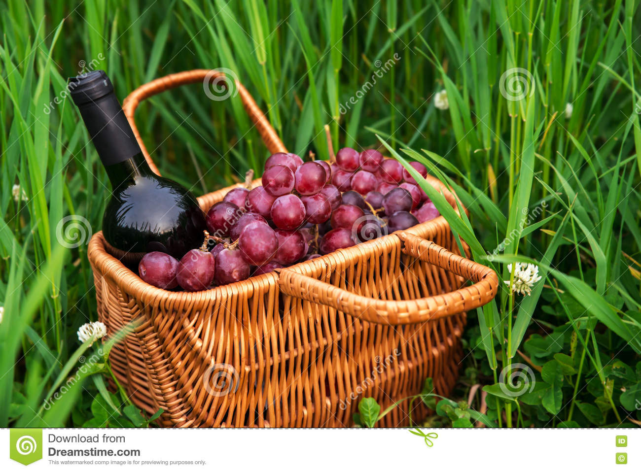 Picnic basket with wine bottle and grapes on green grass lawn.