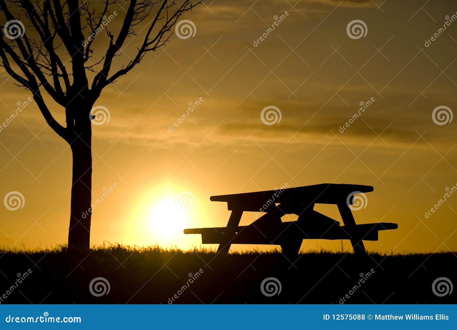 Picnic Table Under The Tree Stock Photo Cartoondealer