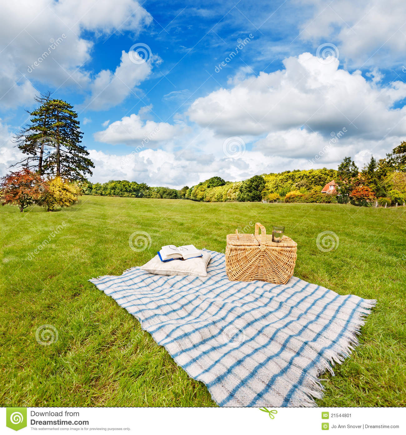 Picnic Blanket Amp Basket In Sunny Field Stock Image Image