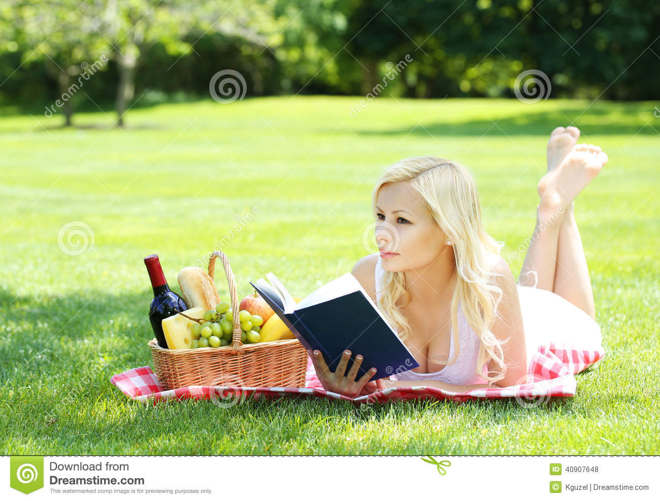 Picnic Blonde Young Woman With Book And Basket Stock
