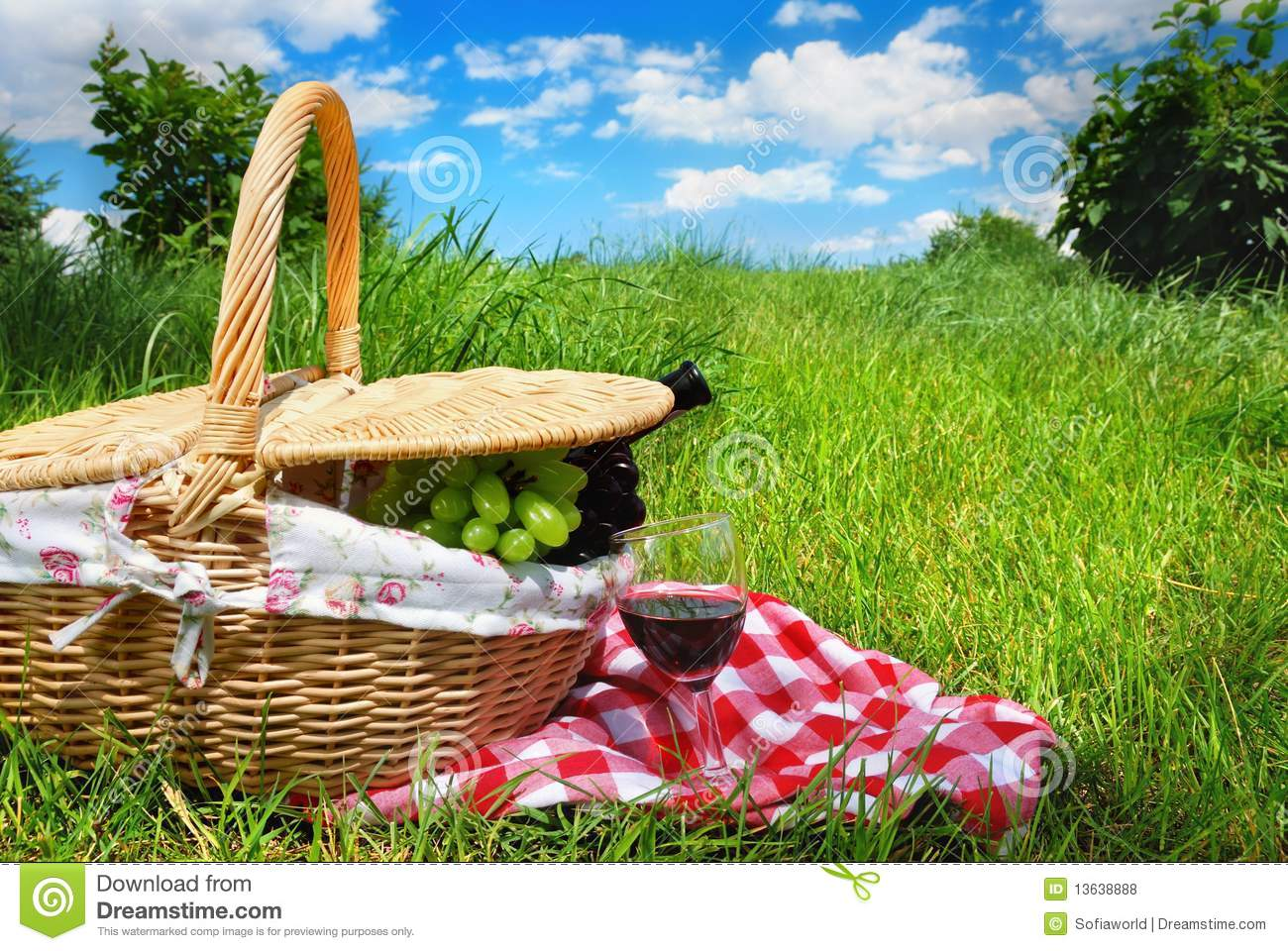 Download Picnic setting with wine stock photo. Image of lifestyle - 13638888