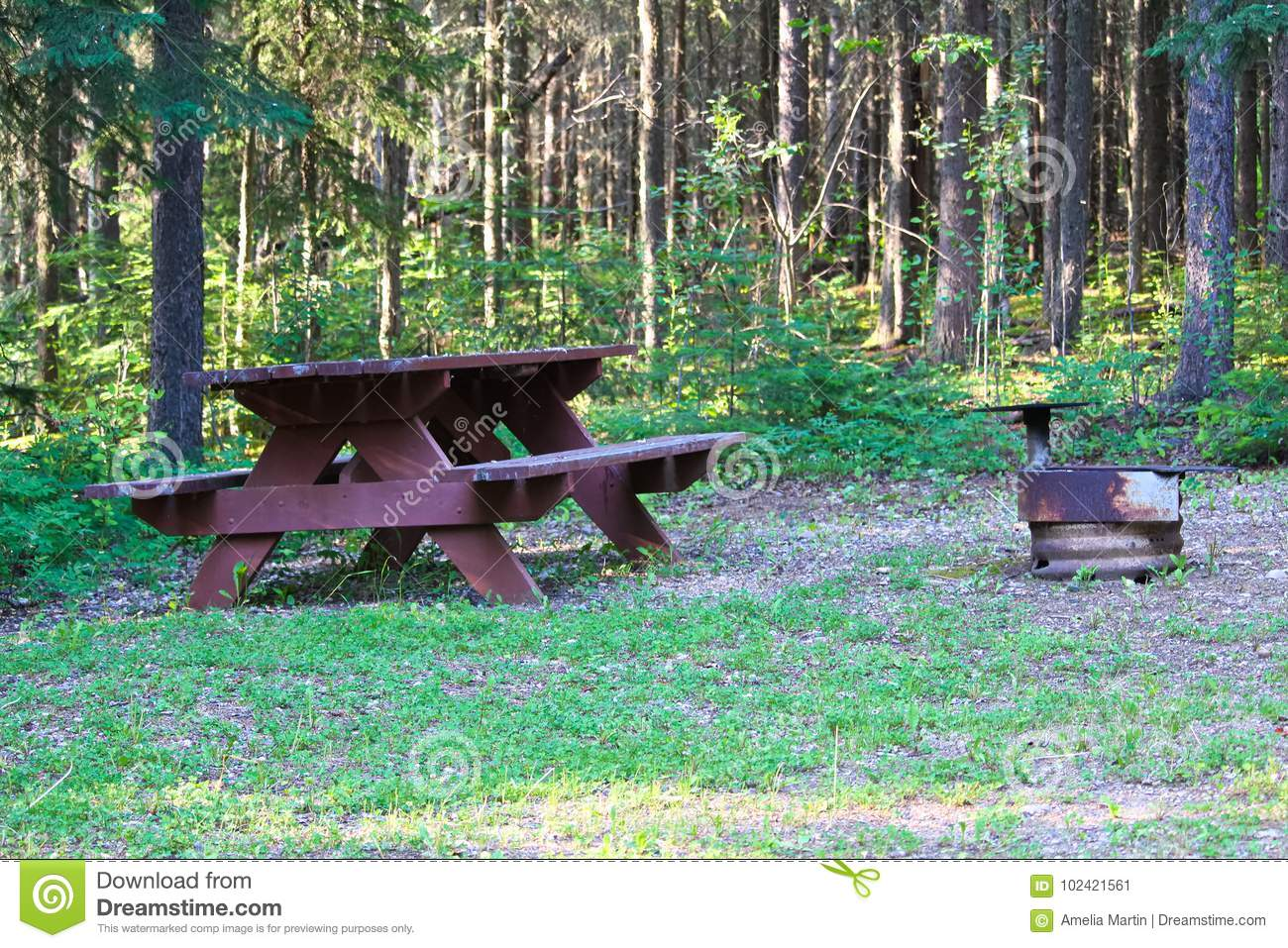A Picnic Table And Fire Ring At A Campsite Stock Image Image Of - Fire picnic table