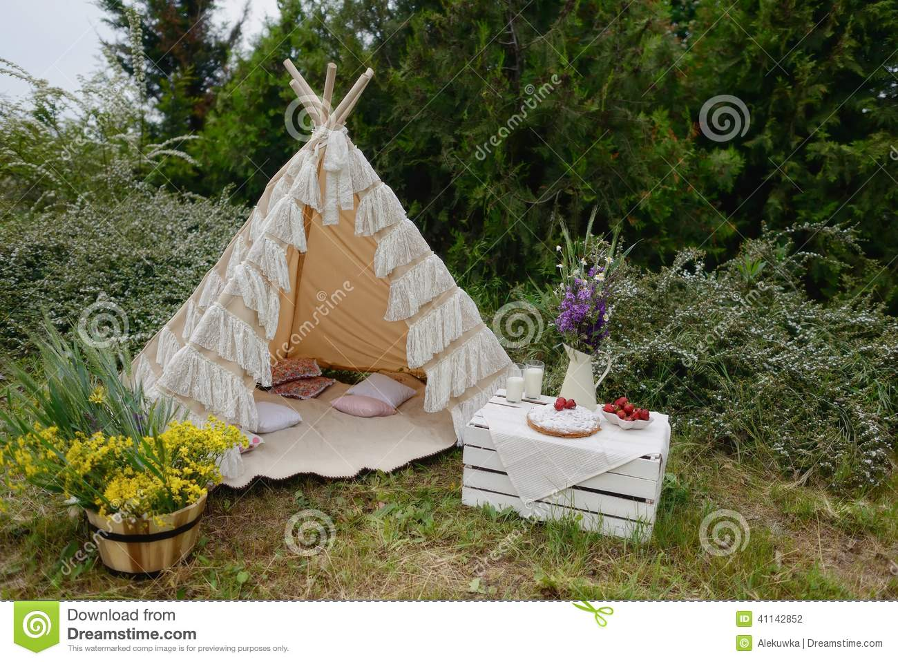 Picnic In A Tent Stock Photo Image Of Summer Grass 41142852
