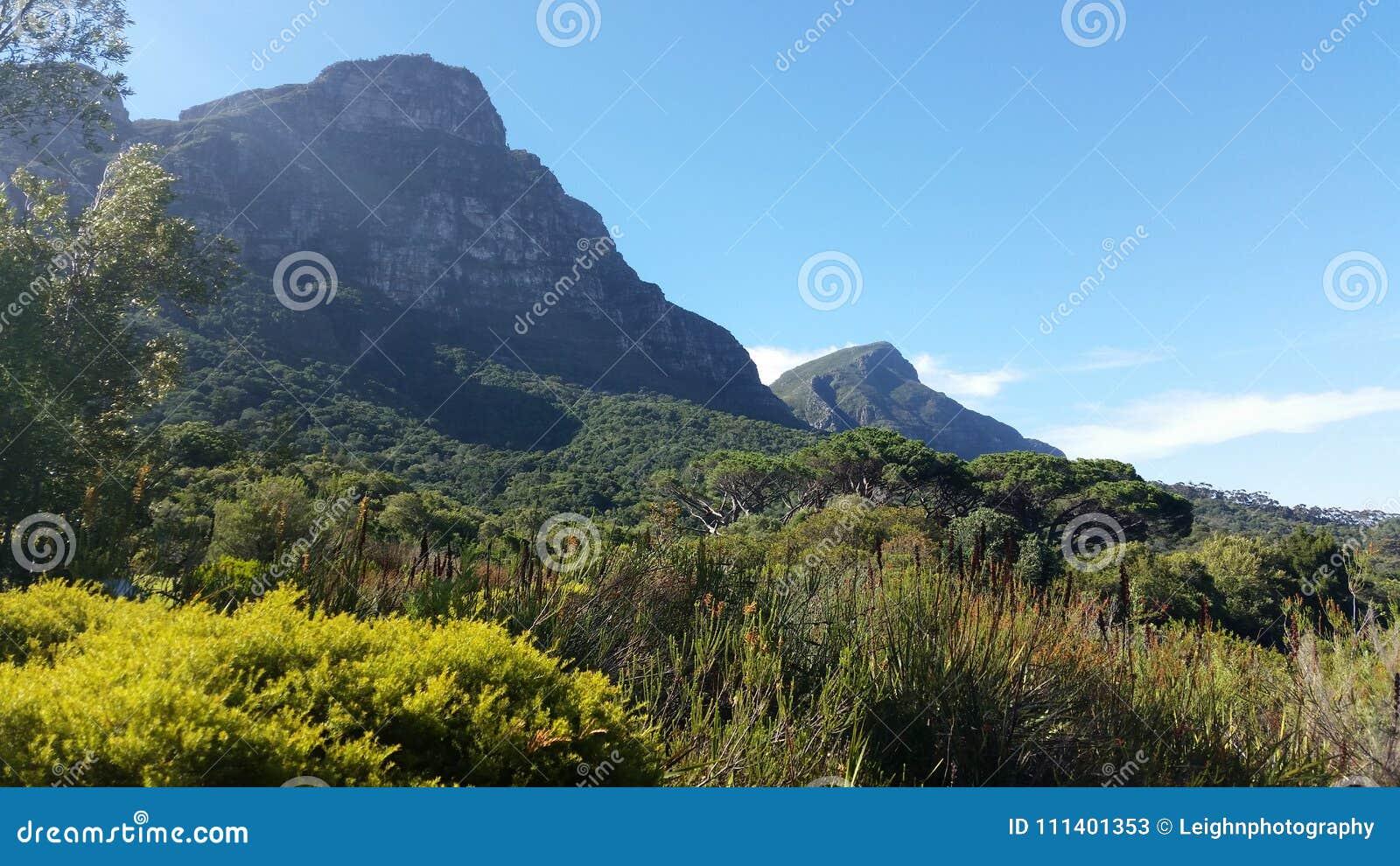 Pico de los diablos de Kirstenbosch