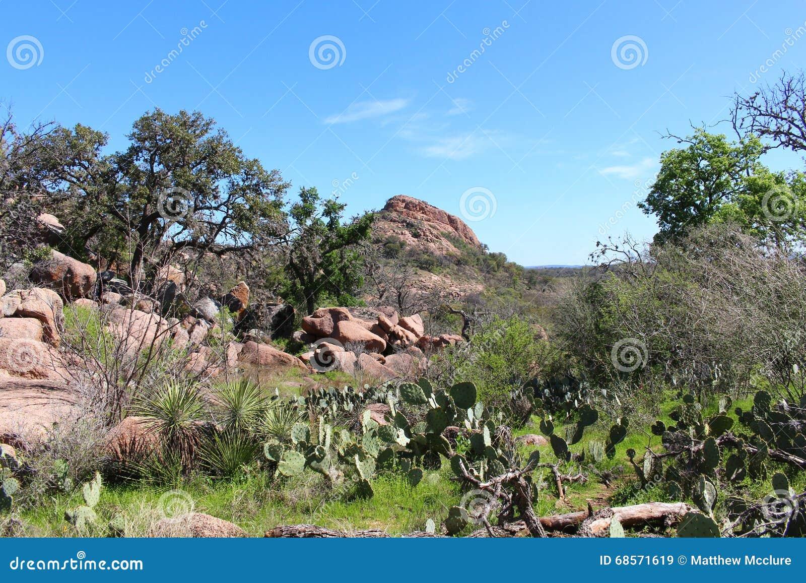 Pico de Turquía en la roca encantada