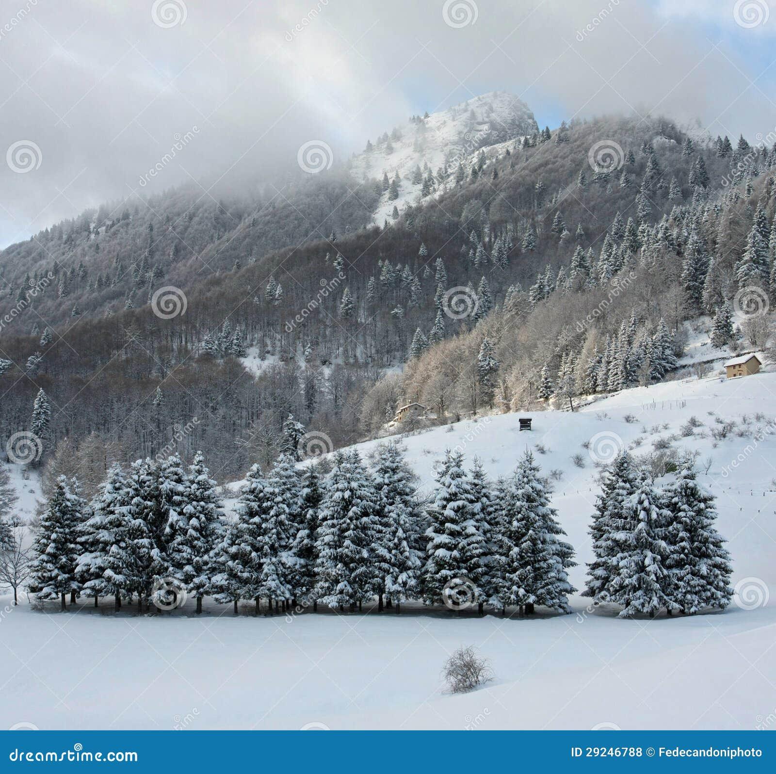 Download Picos Das Dolomites E Os Cumes Durante Um Dia De Inverno Foto de Stock - Imagem de fundos, montanha: 29246788
