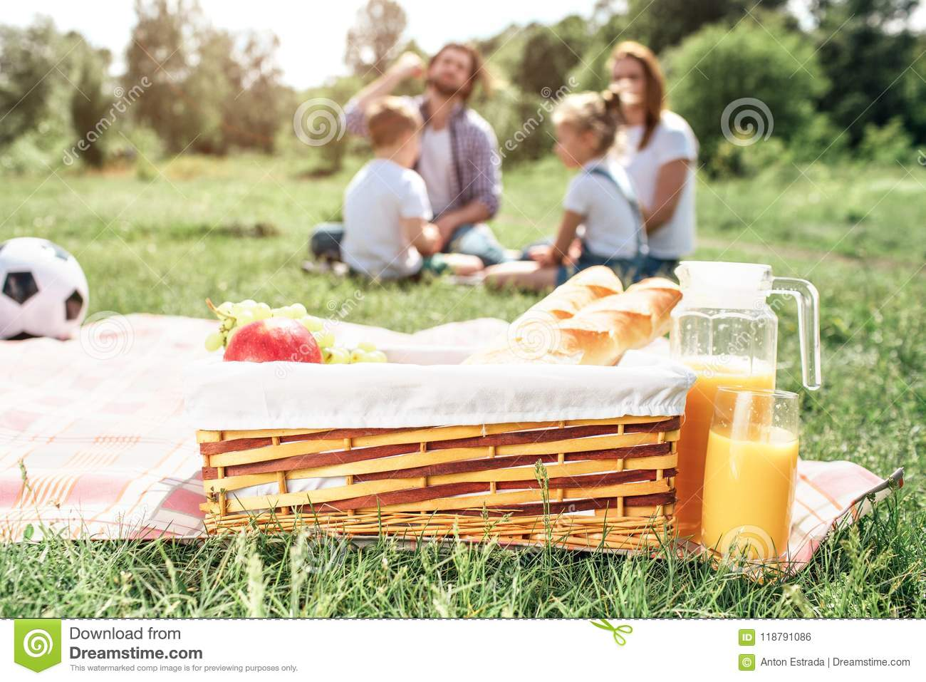 A picture of basket with fruit and bread standing on blanket on grass. There is a big jar of orange juice besides it