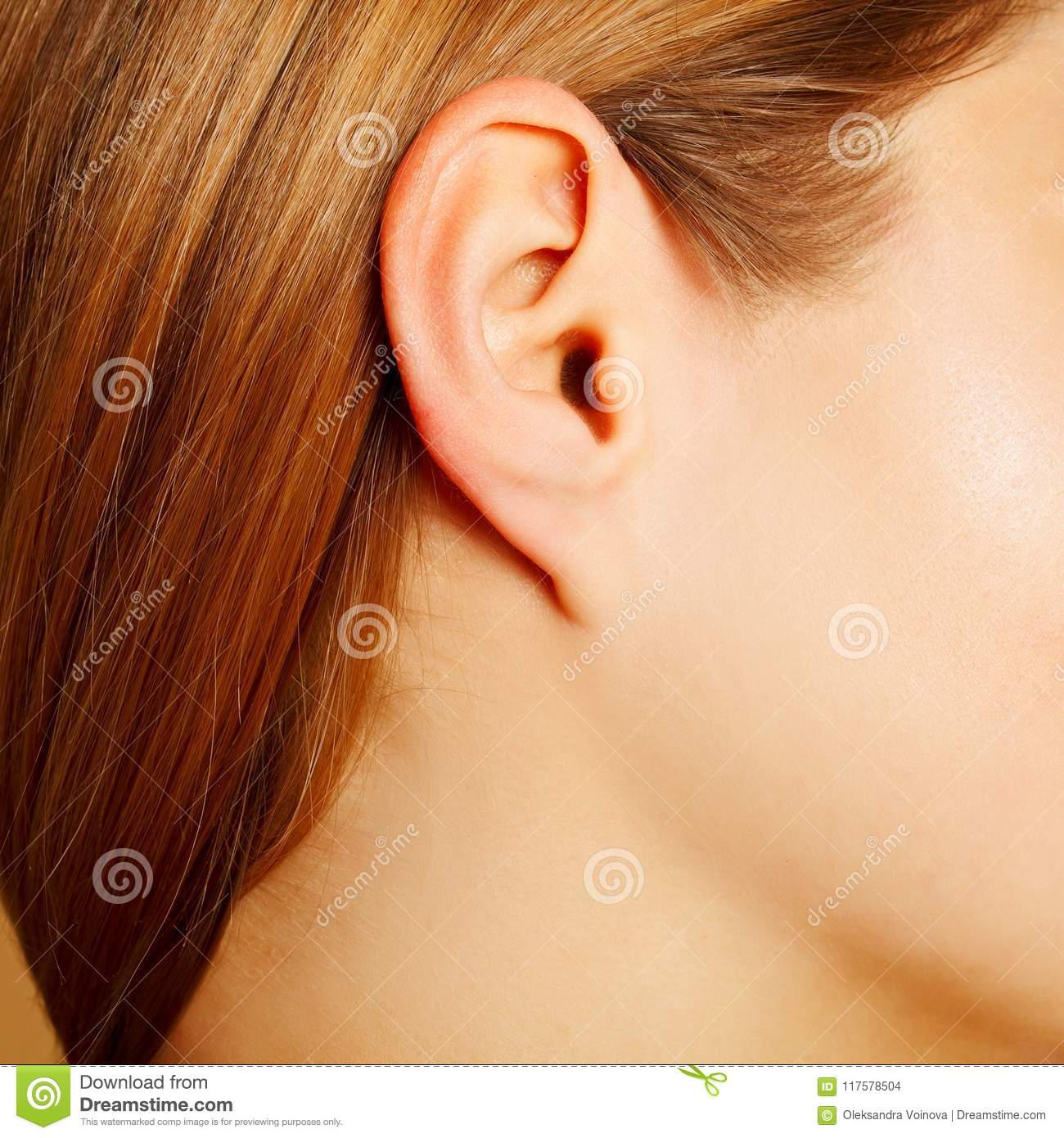 Woman`s Ear Close Up, Anatomy Concept Stock Photo - Image of female ...