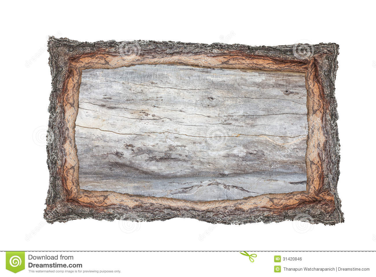 picture frame wood cross section backgrounds bark and wood textu