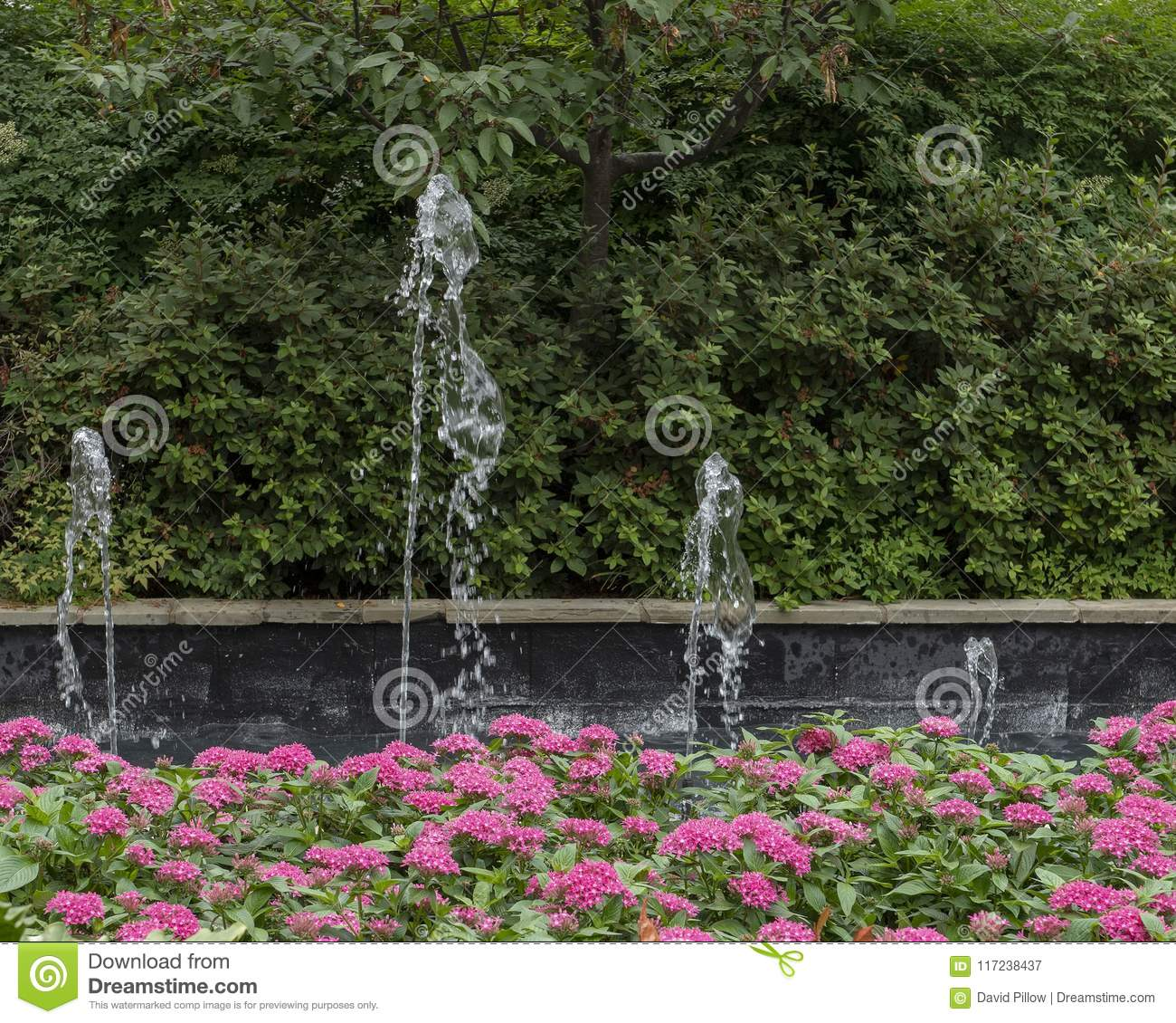 Download Colorful Flower Bed And Fountain In The Dallas Arboretum And  Botanical Garden Stock Image