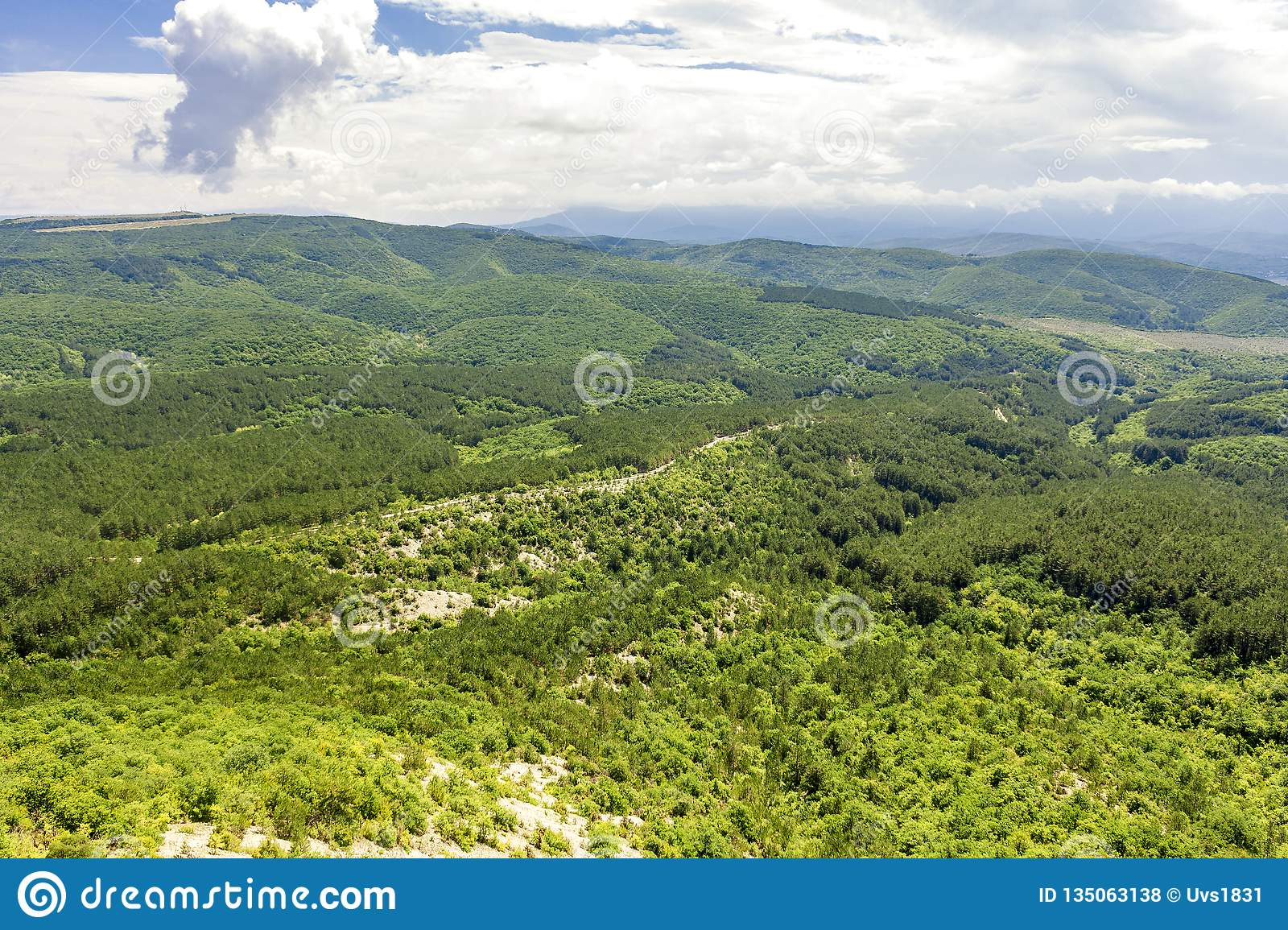 Picturesque hilly valley overgrown with dense forest and shrubs, with a country road passing through it. Bird`s eye view