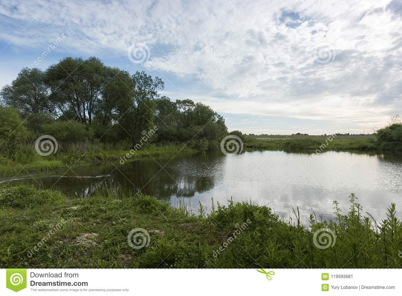 A picturesque pond with overgrown green banks and clouds in the blue sky.