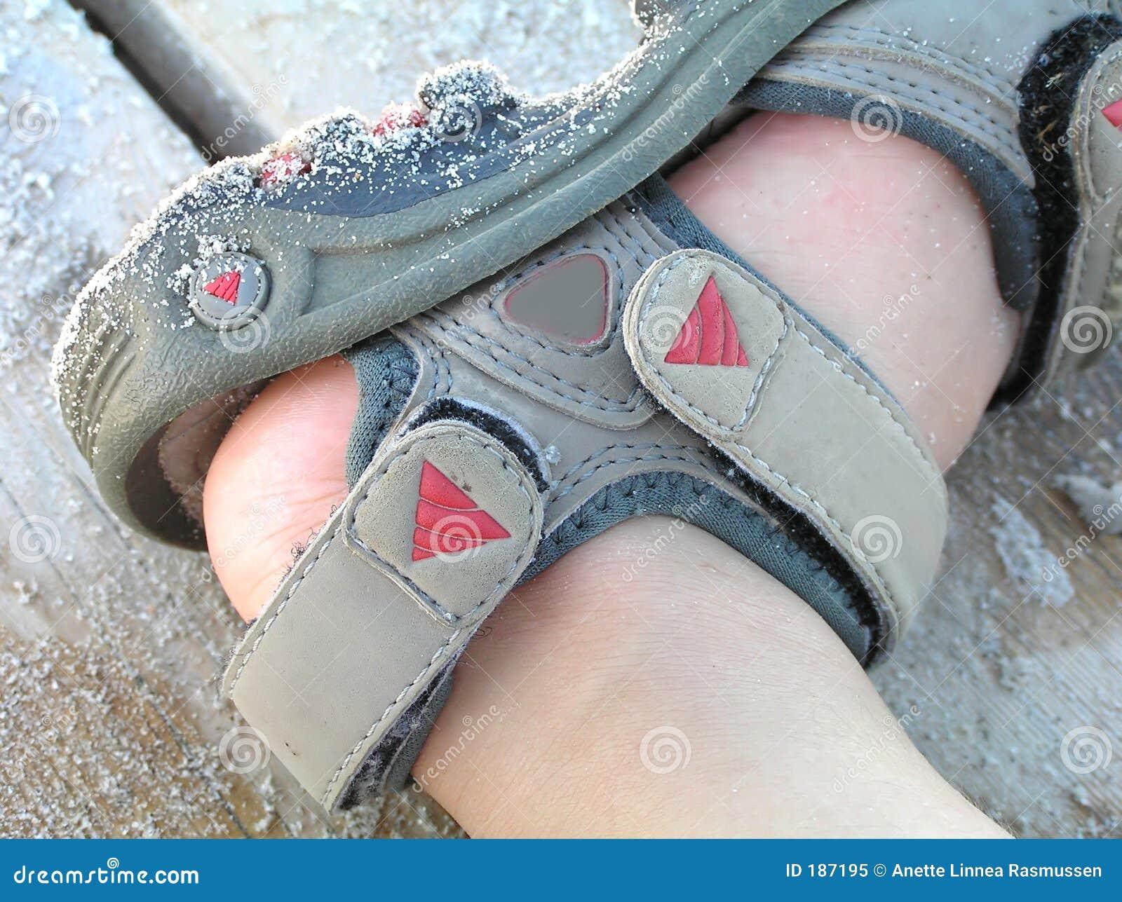 Pie del niño en sandalia