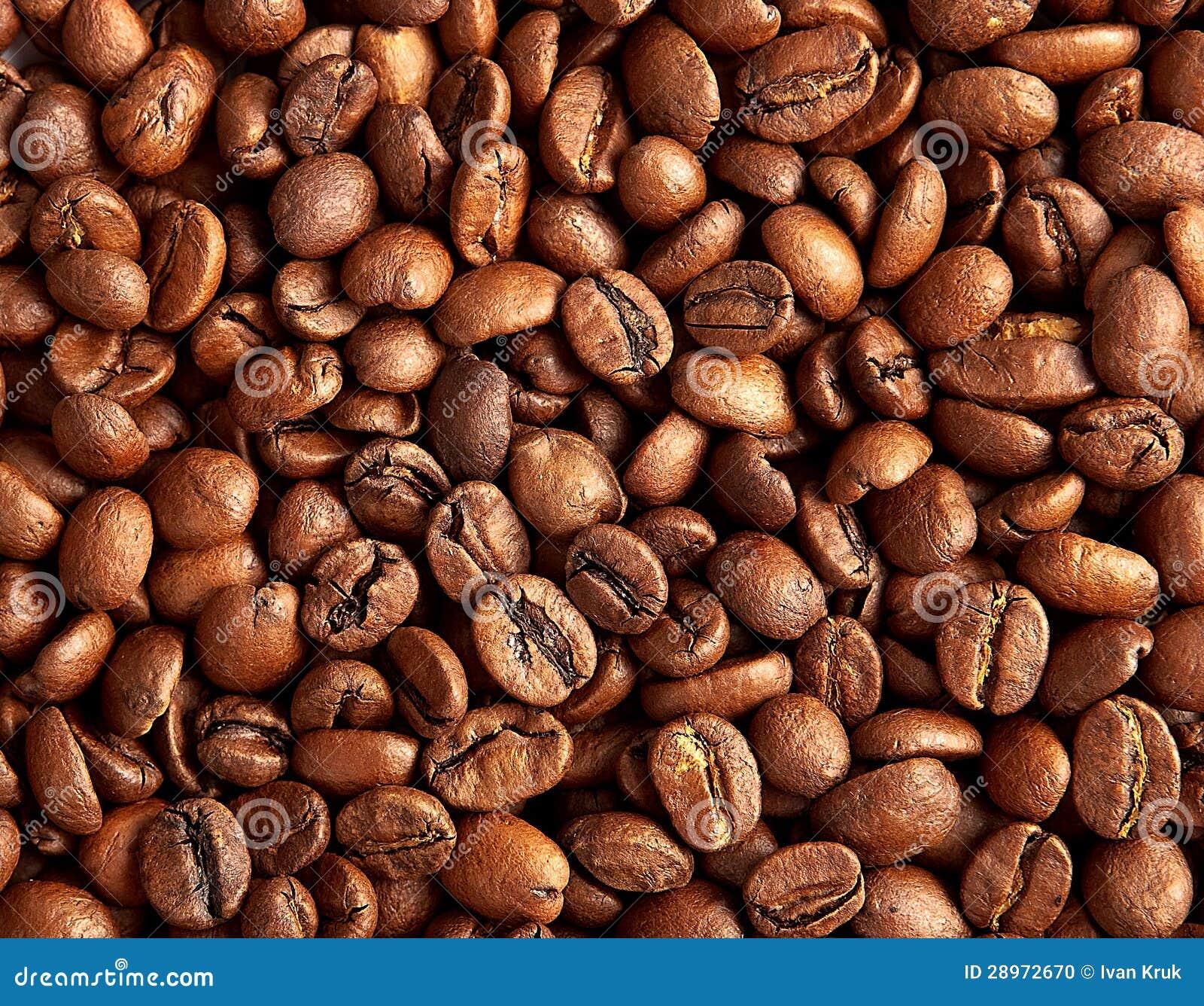 Piec brown kawowe fasole