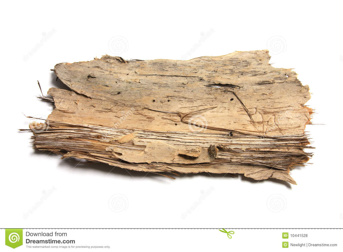 piece of tree bark royalty free stock photos image 10441528